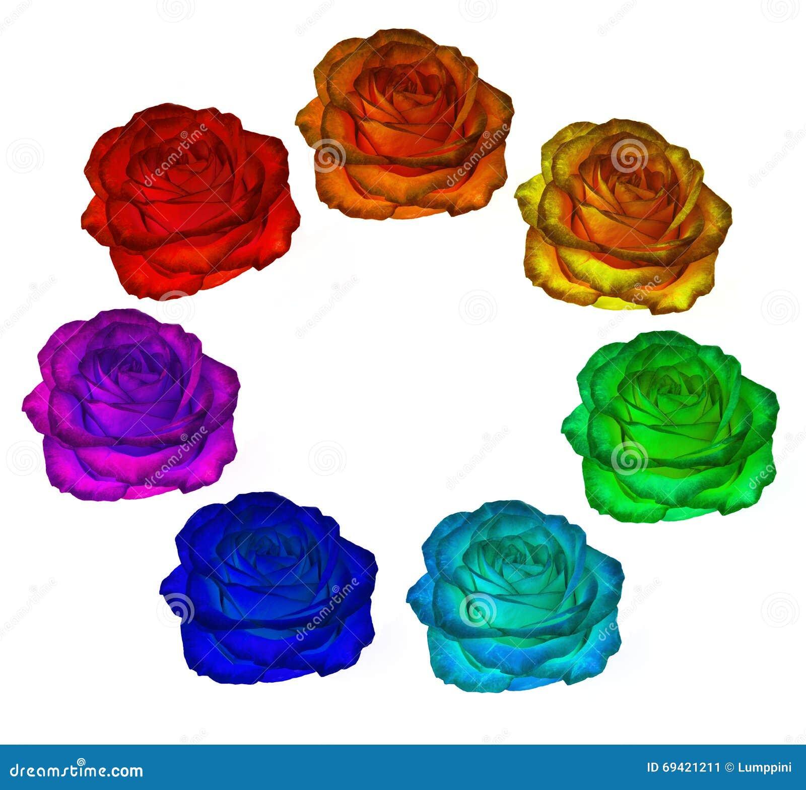 Rozen van alle kleuren van de regenboog op een witte achtergrond Clipar