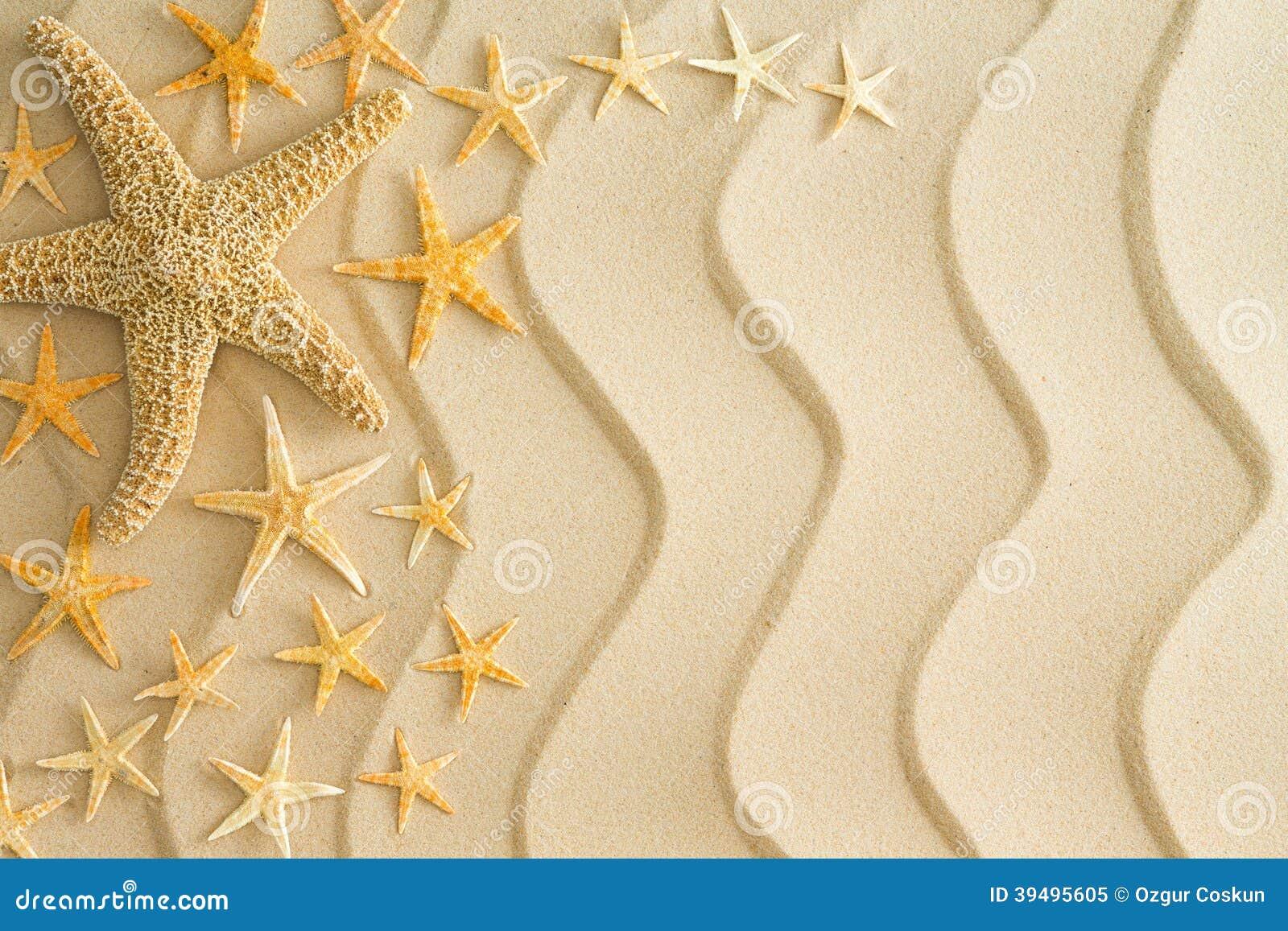 Rozgwiazda na złotym plażowym piasku z falistymi liniami