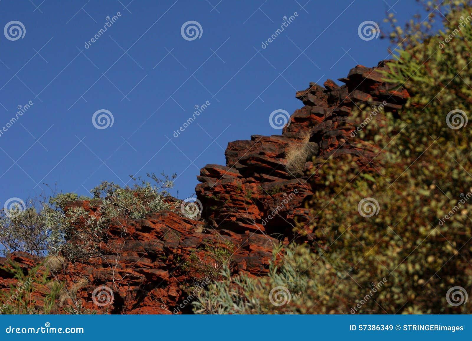 Rozjarzona czerwieni skały twarz i krzak przy zmierzch pobliską górą Bez nazwy