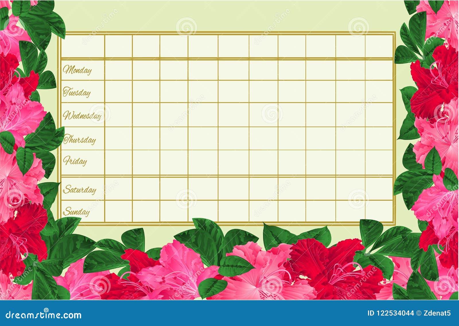 Rozkładu zajęć tygodniowy rozkład z kwitnienie czerwienią i menchiami kwitnie różanecznika rocznika wektorowy ilustracyjny editab