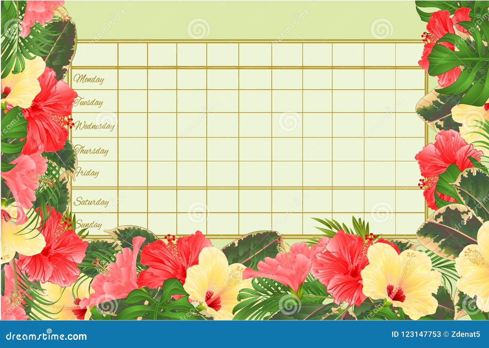 Rozkładu zajęć tygodniowy rozkład z poślubnika różnorodnego, palmowego, filodendronu i ficus rocznika wektorowy Ilustracyjny edit