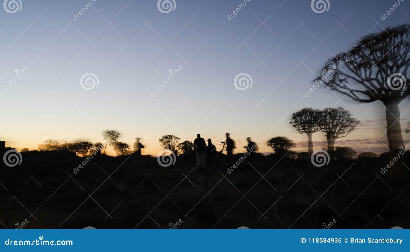 Rozmyci skutki grupowi fotografowie sylwetkowi wśród drzew