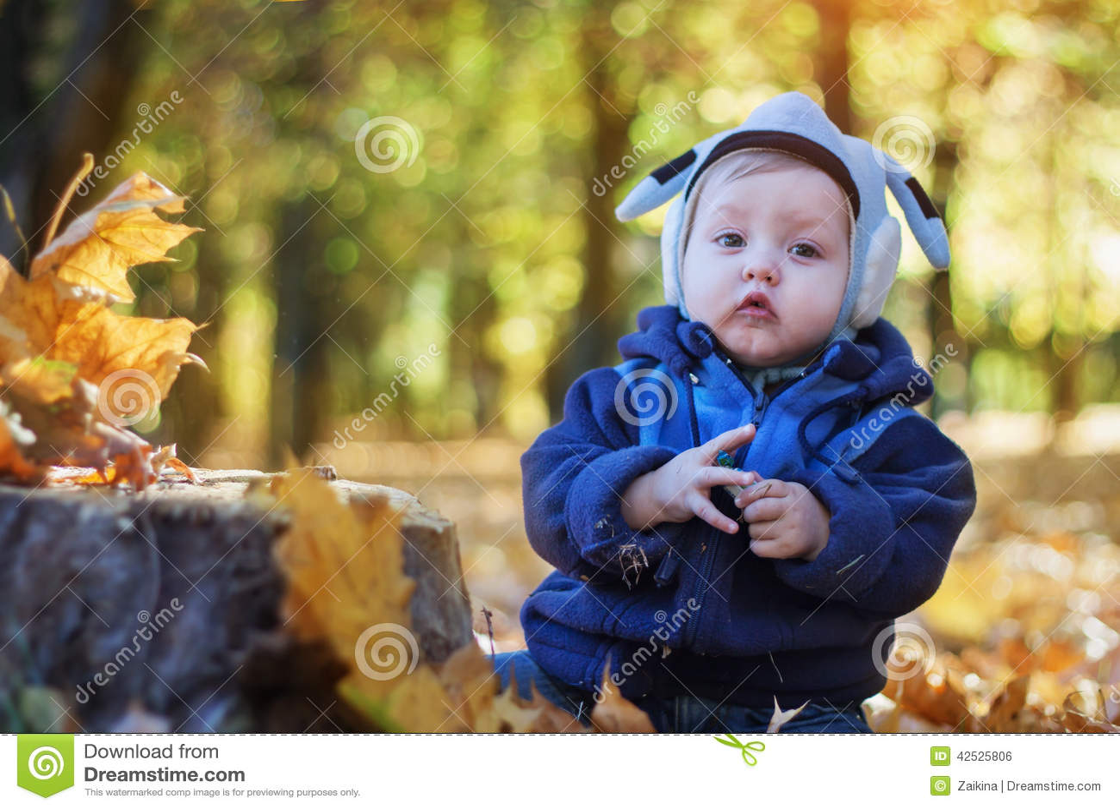 Rozochocona uśmiechnięta chłopiec w jesień parku
