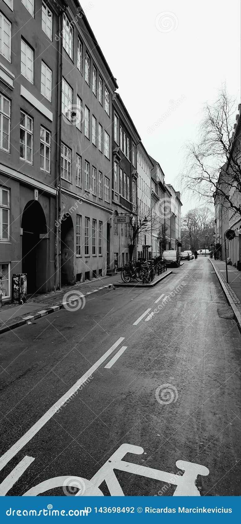 A rua é dividida em duas porções iguais Um carro, o outro - uma bicicleta