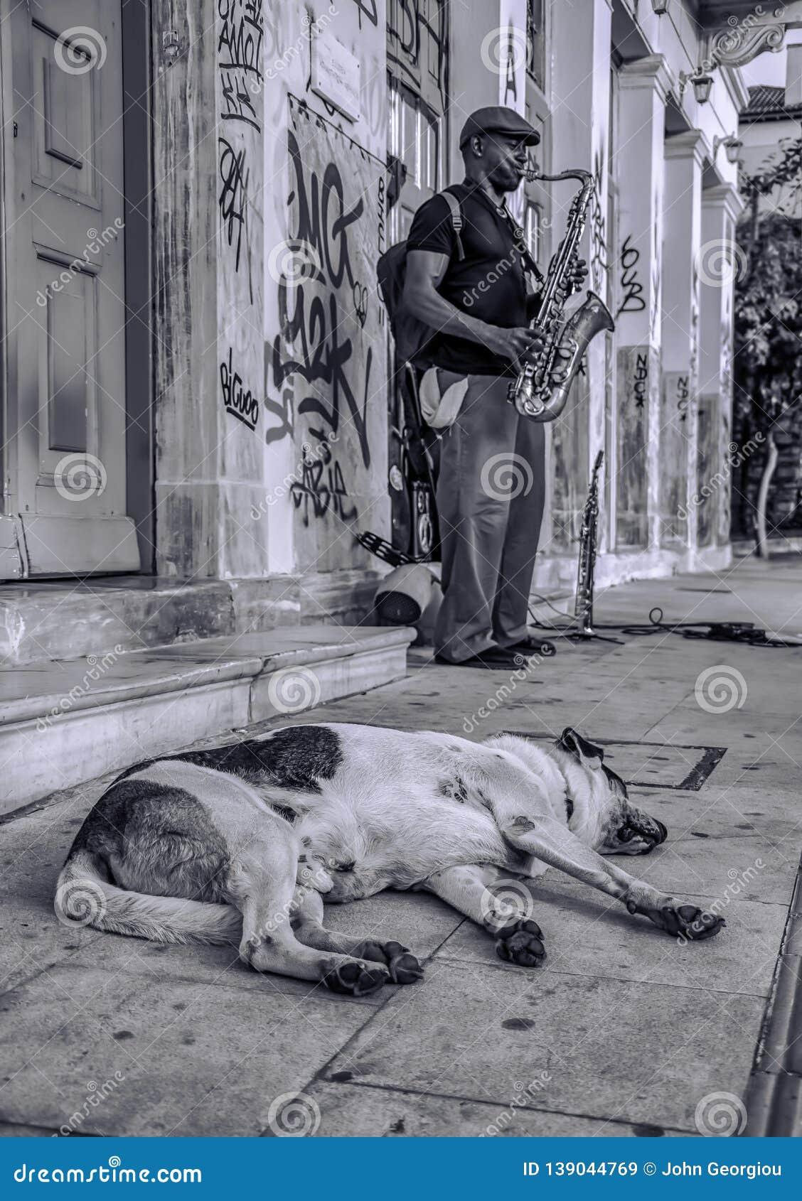 Rua da acrópole de Atenas - de Grécia