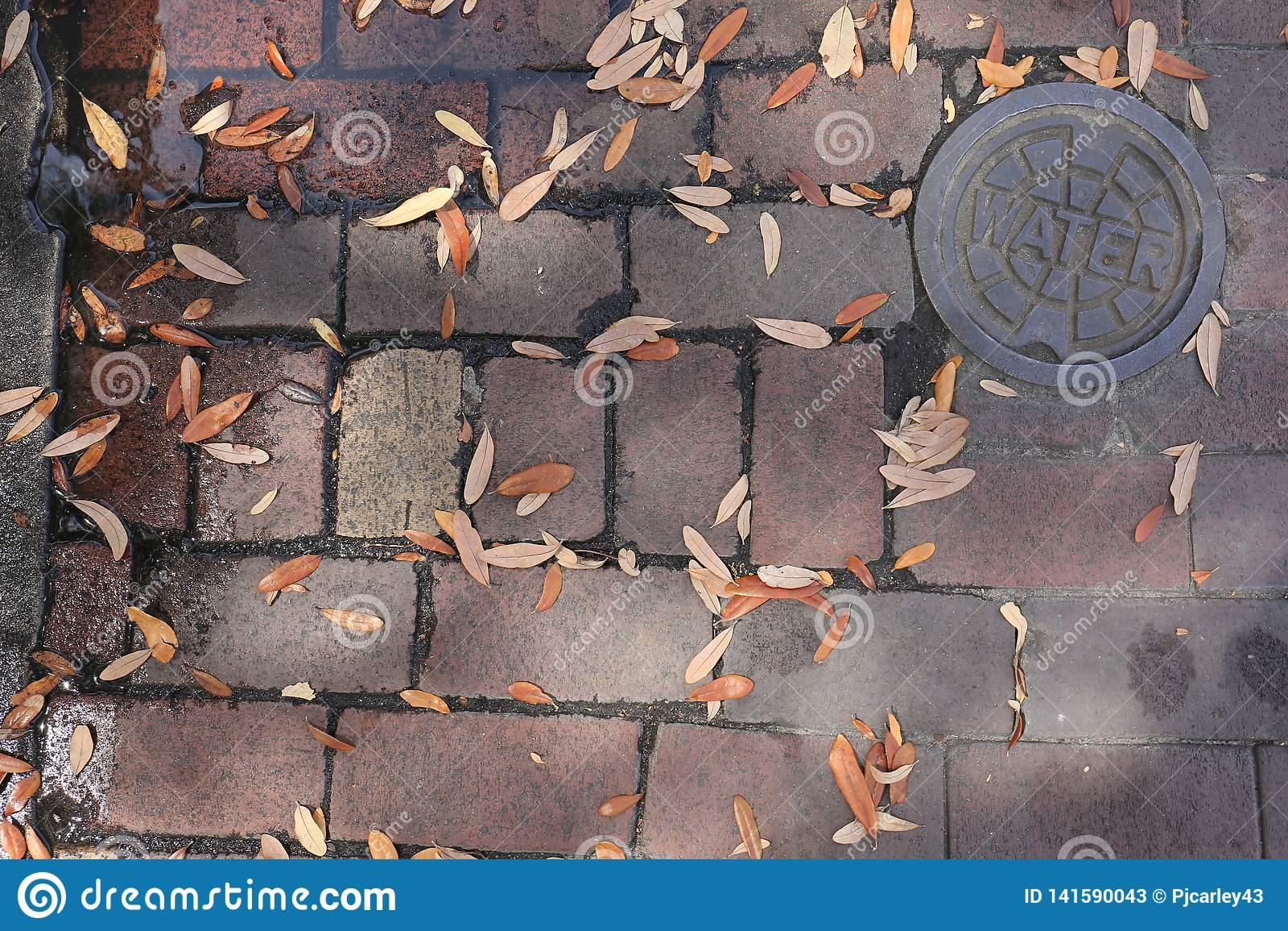 Rua velha suja do tijolo com folhas e Rusty Steel Water Cover
