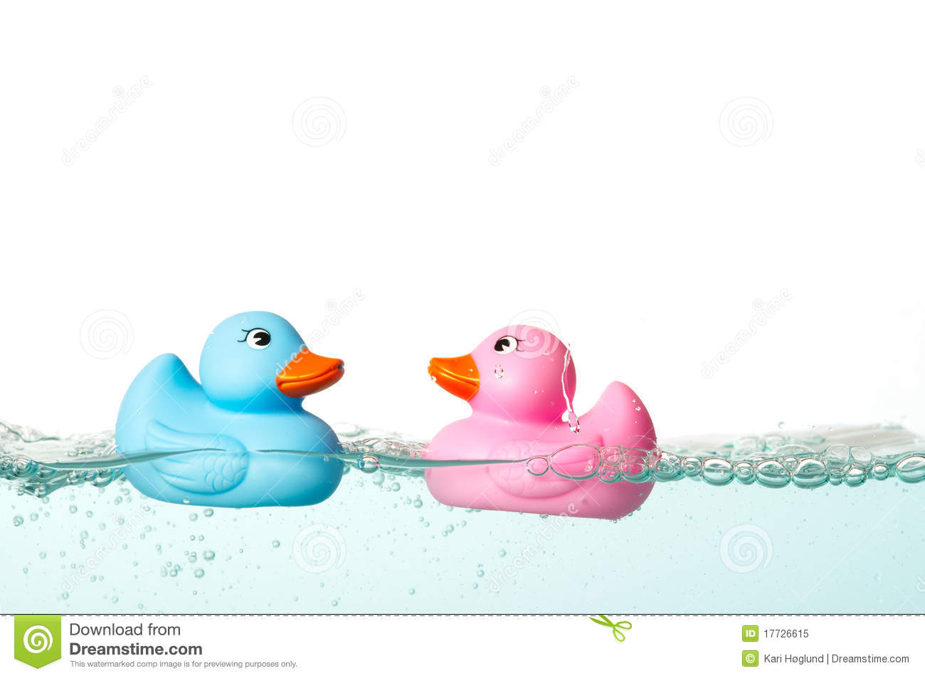 Rubber duck royalty free stock photo image 17726615