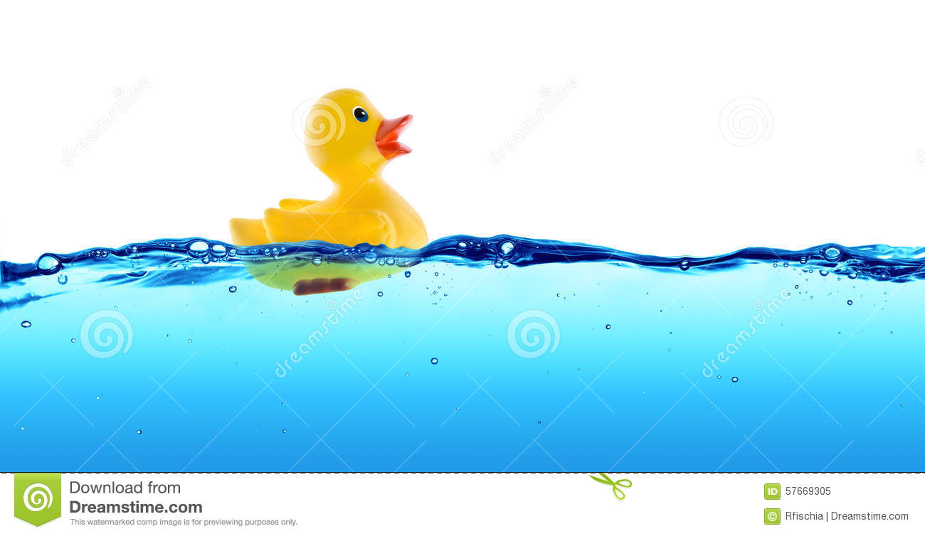 Rubber duck float stock image. Image of yellow, floating - 57669305