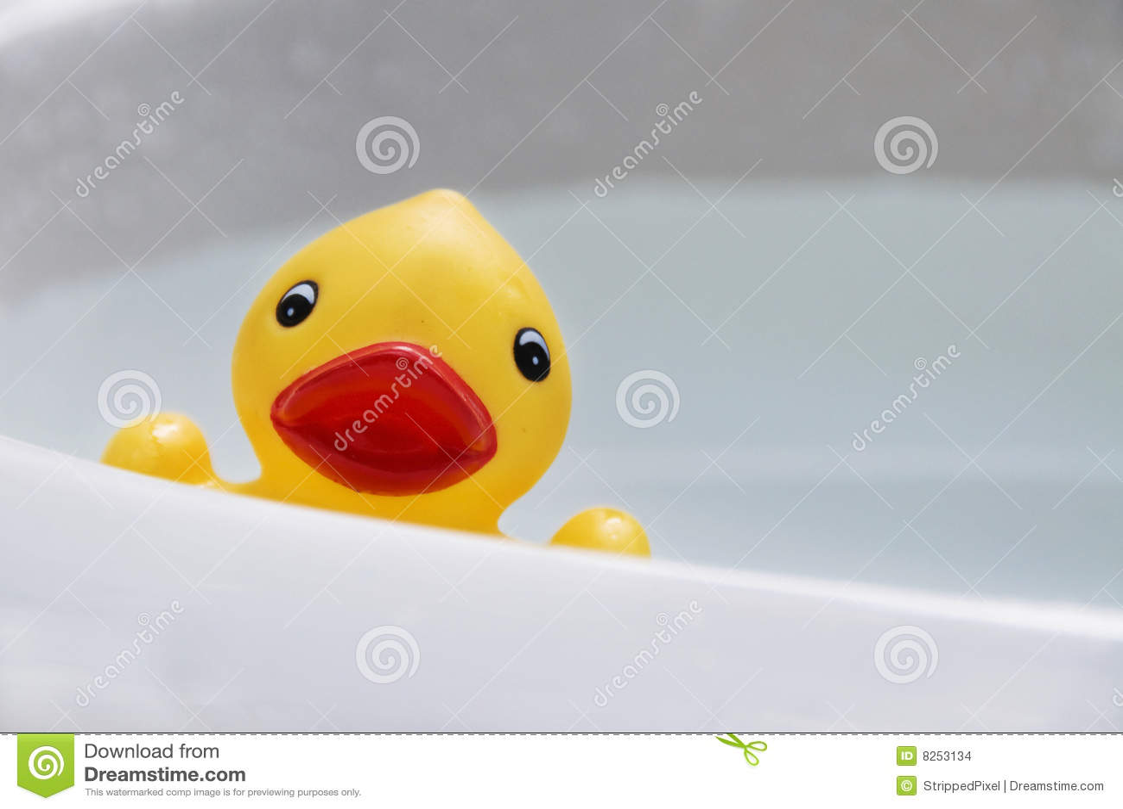 Rubber Duck in Sink