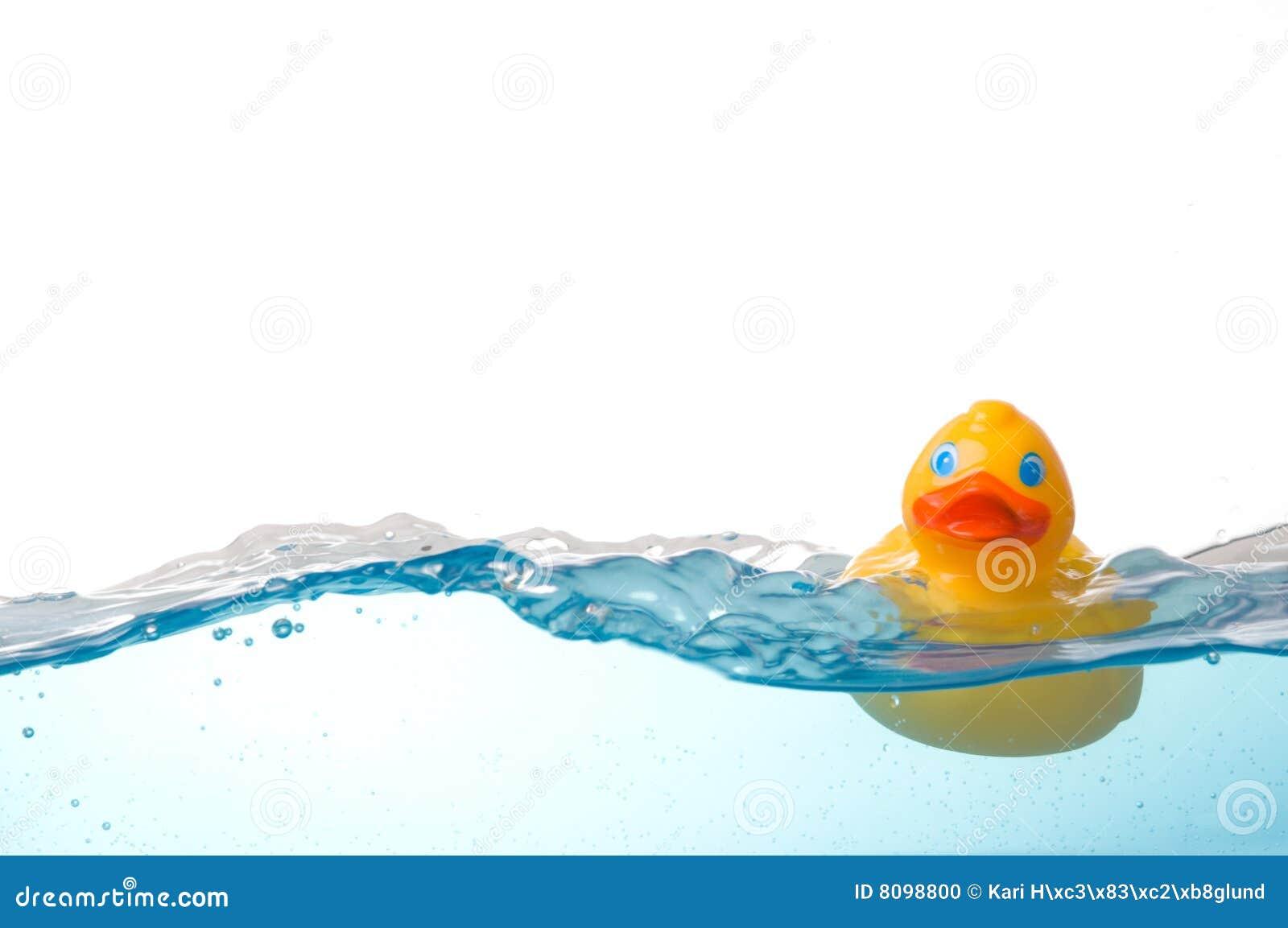 Rubber Eend in Water