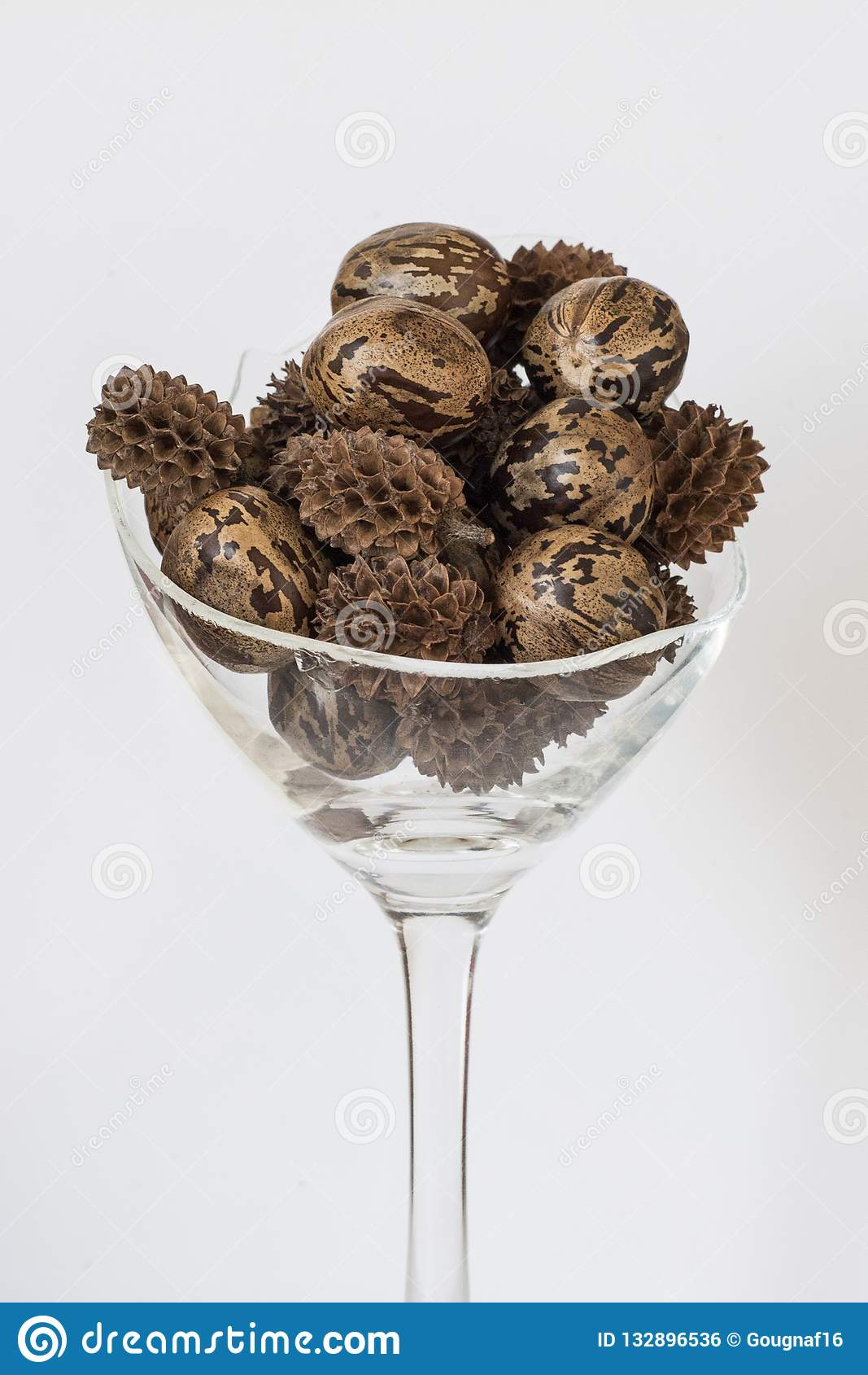 Rubber And Other Tropical Seeds In A Broken Whine Glass On A