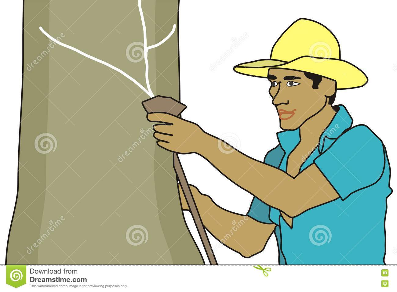 Rubber Tapper Stock Illustration Image Of South Tree