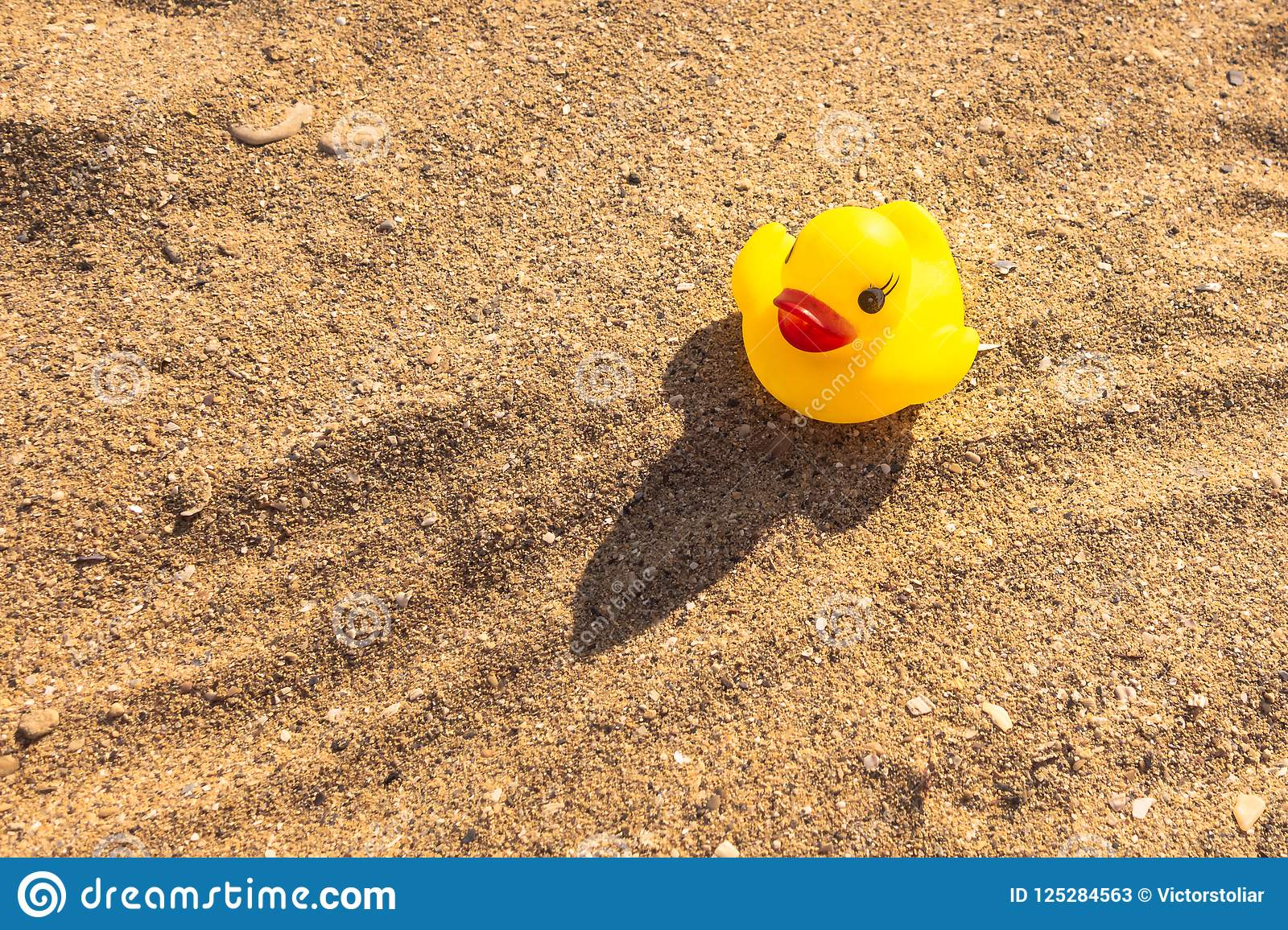 Rubber Toy Duck. Rubber Yellow Duckling Is Sitting On The Beach In A ...