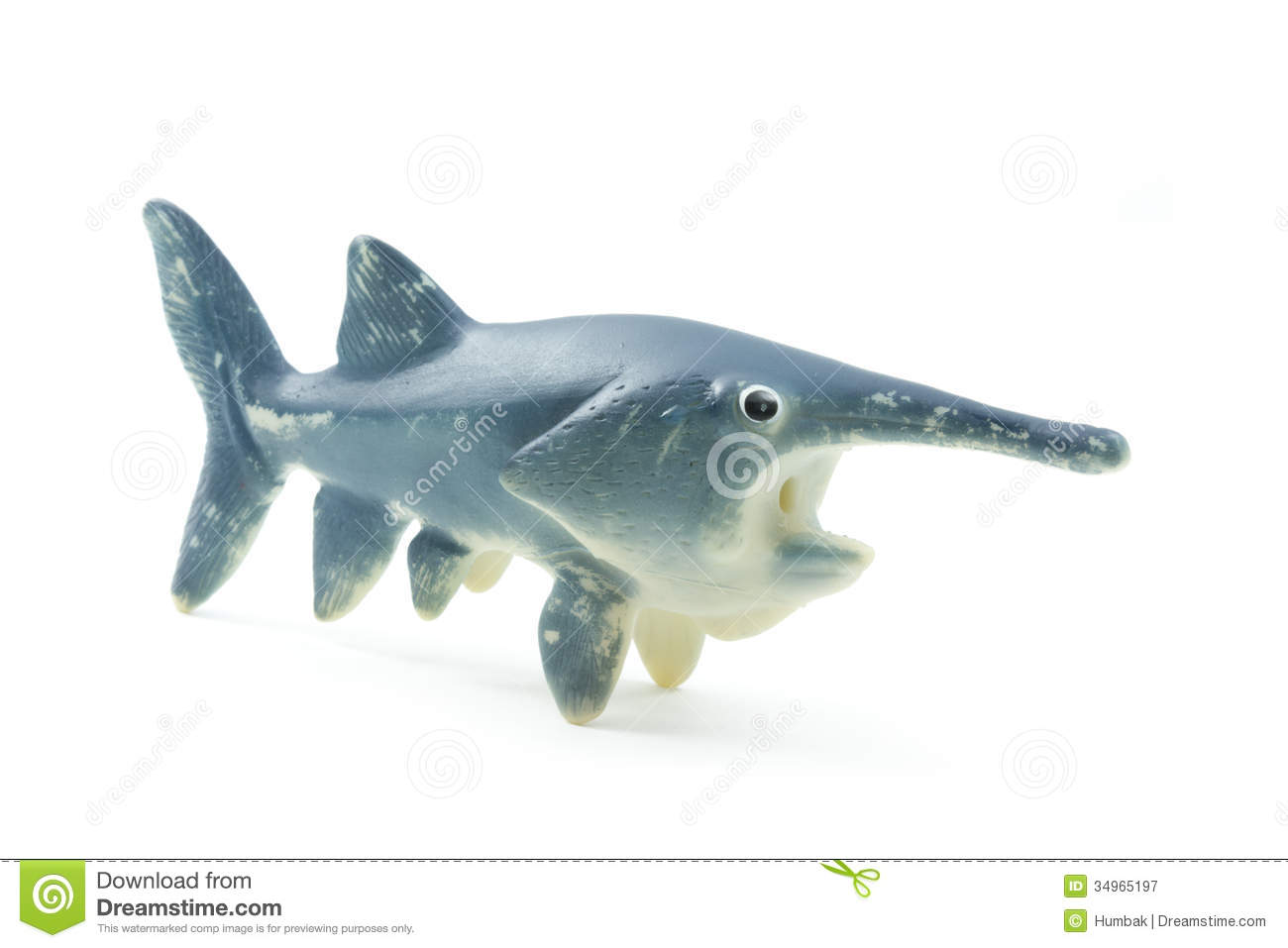 Rubber toy fish royalty free stock photography image for Rubber fish toy