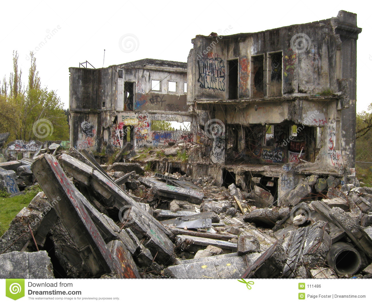 Rubble and ruins royalty free stock image image 111486 for Build on your lot washington state