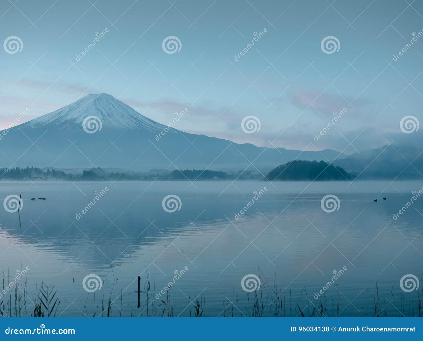 Ruch plama od grupy unosi się na jeziornym przedpolu kaczka i