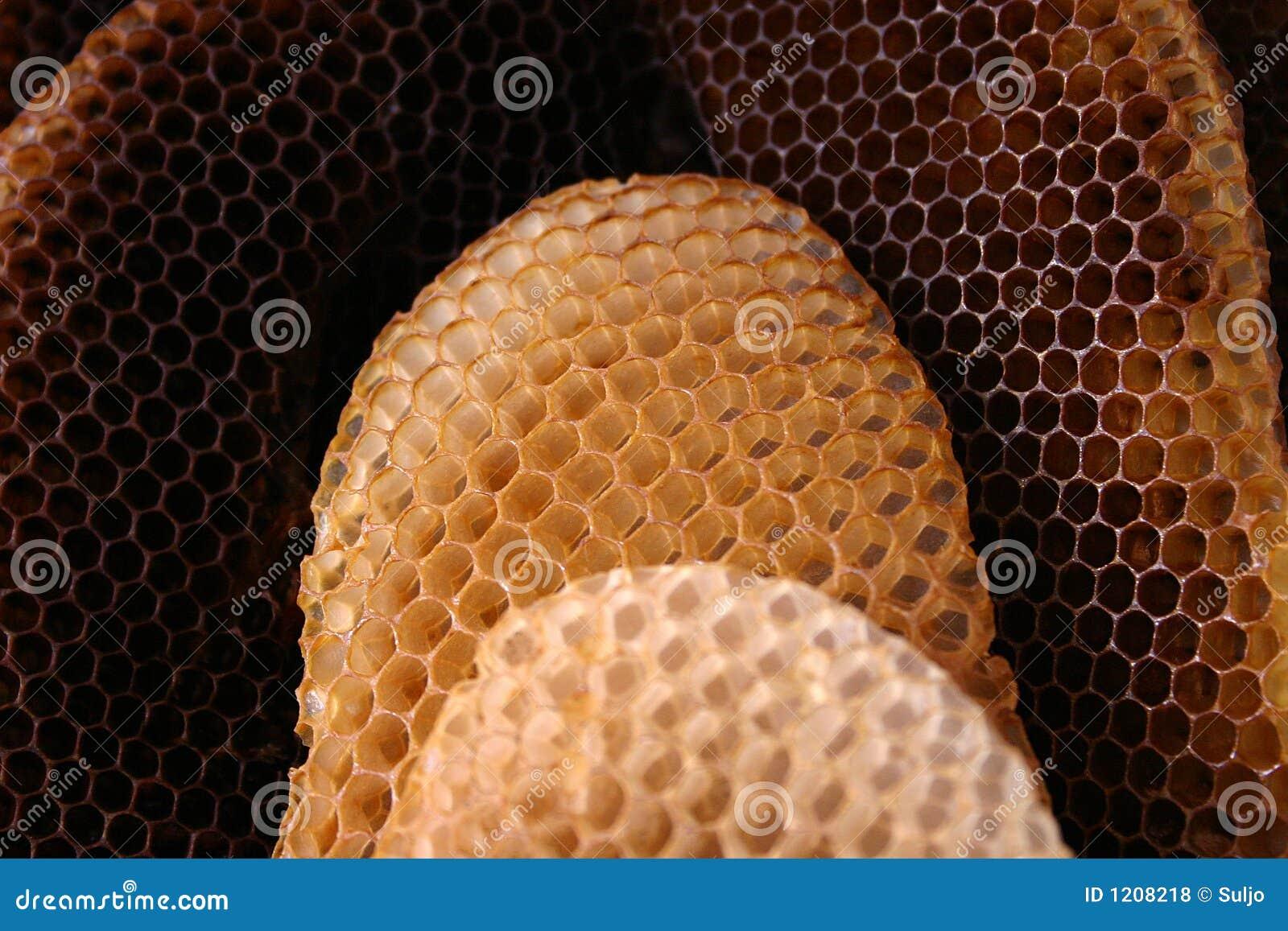 Ruche D 39 Abeille Photos Libres De Droits Image 1208218