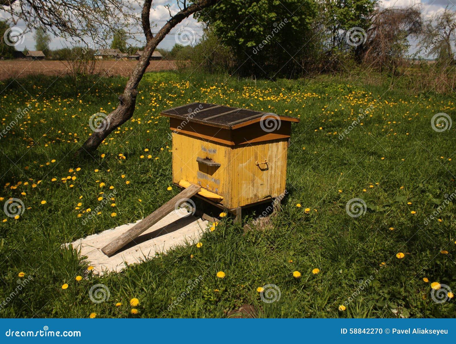 Ruche D 39 Abeille Au Printemps Photo Stock Image Du