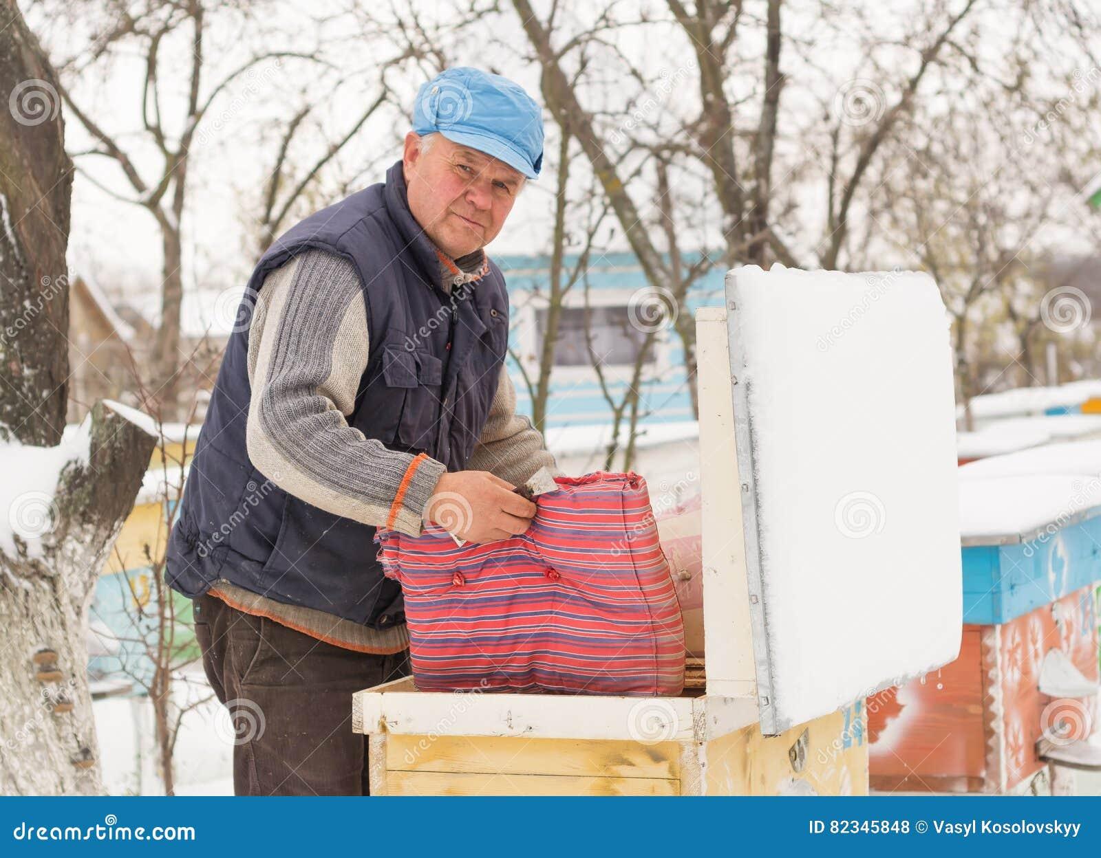Ruches d isolation d apiculteur avec des abeilles en hiver
