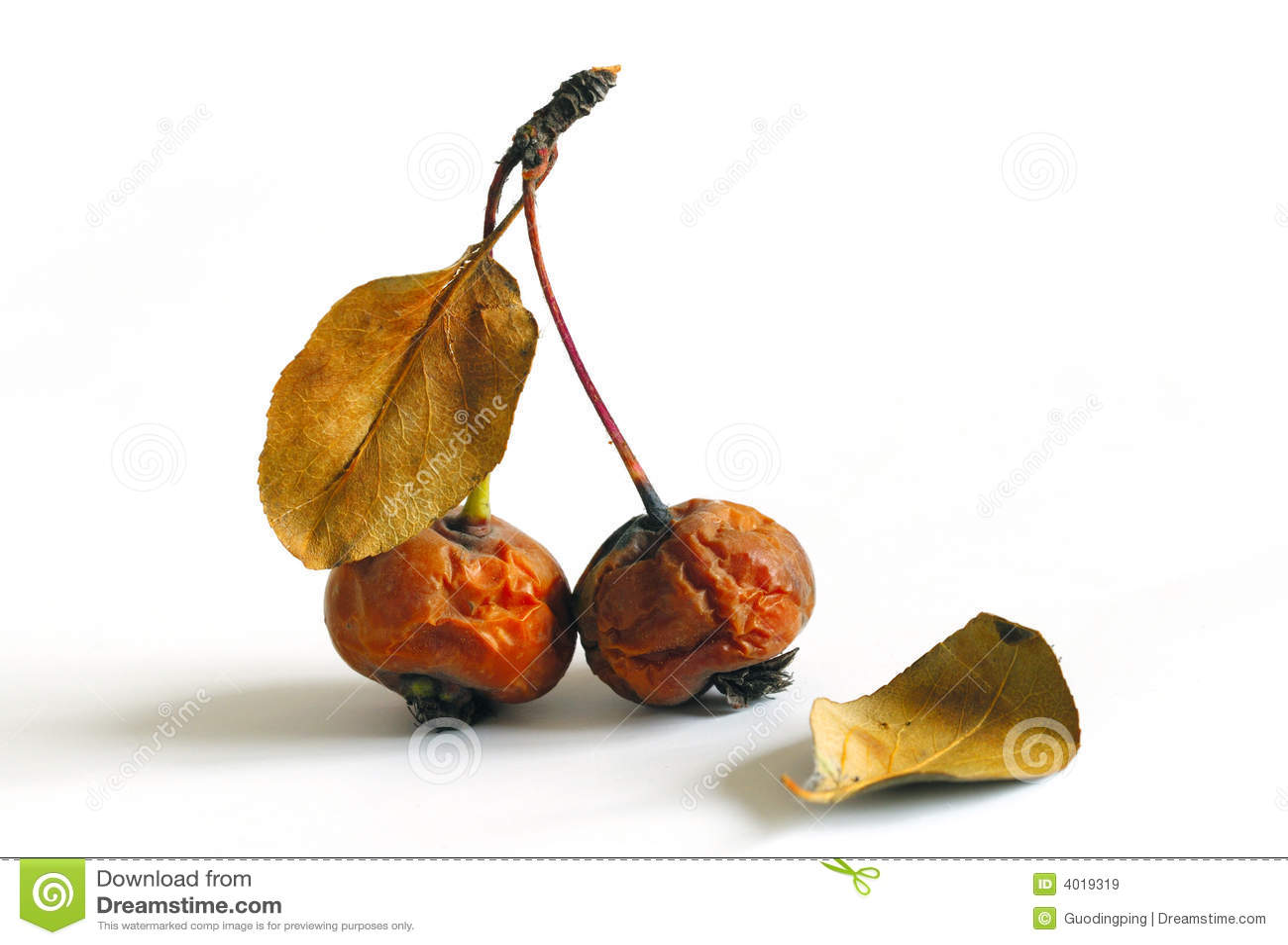 Ruck la fruta