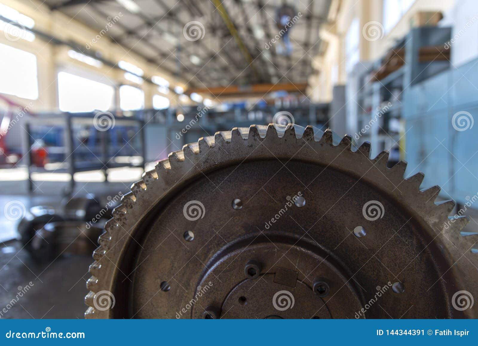 Rueda de engranaje de acero industrial