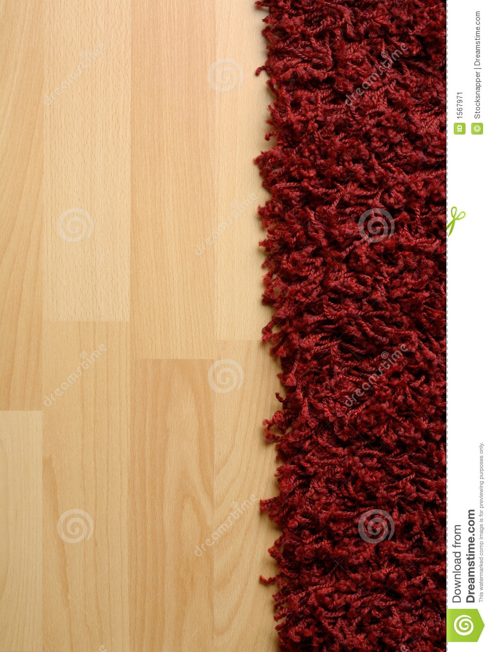 Rug on laminate floor stock image image 1567971 for Rugs for laminate floors