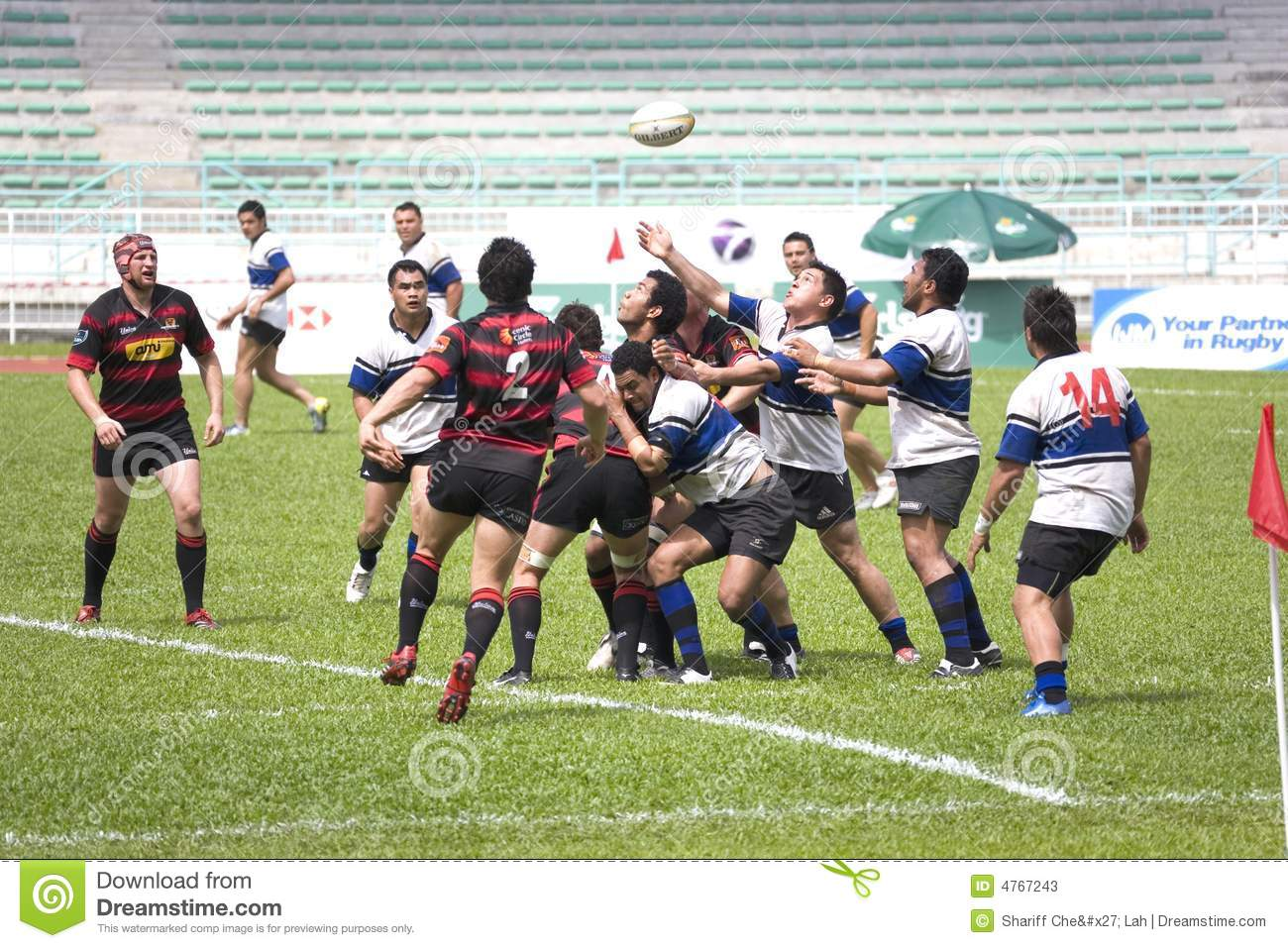 Rugby editorial stock photo  Image of ball, league, exercise