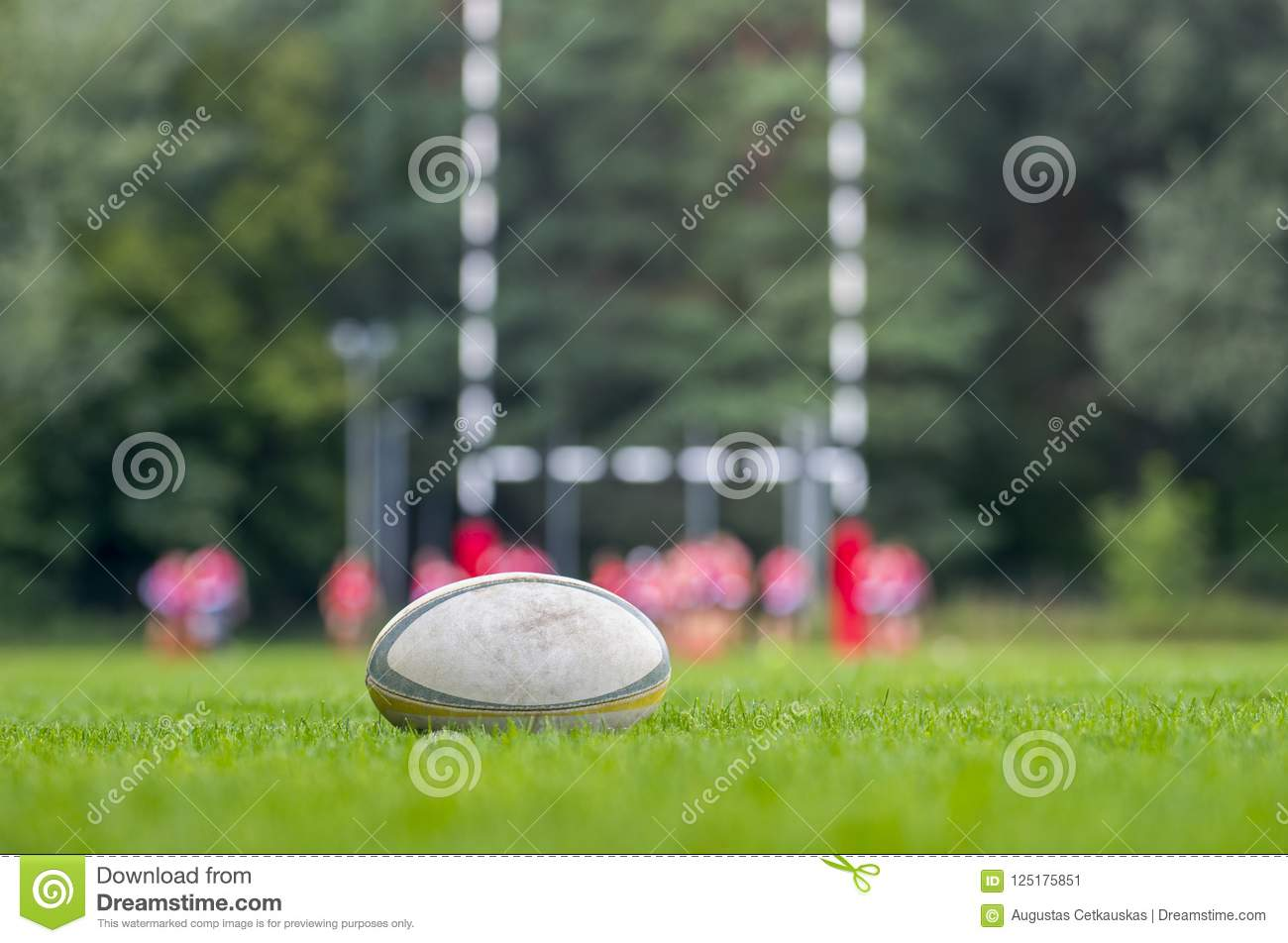 Rugby ball at green grass. Photo taken at rugby match.
