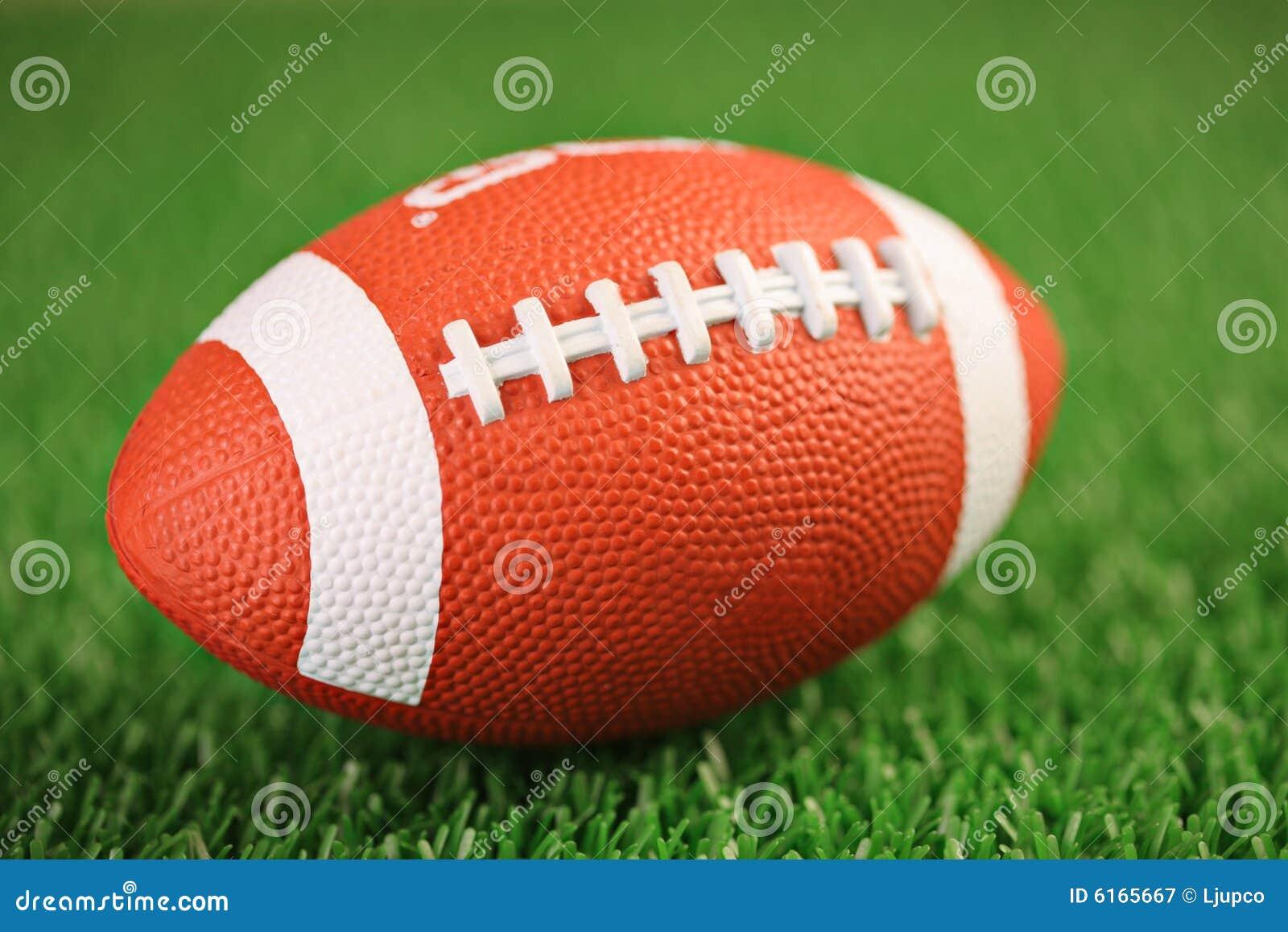 Rugbykugel auf einem Gras