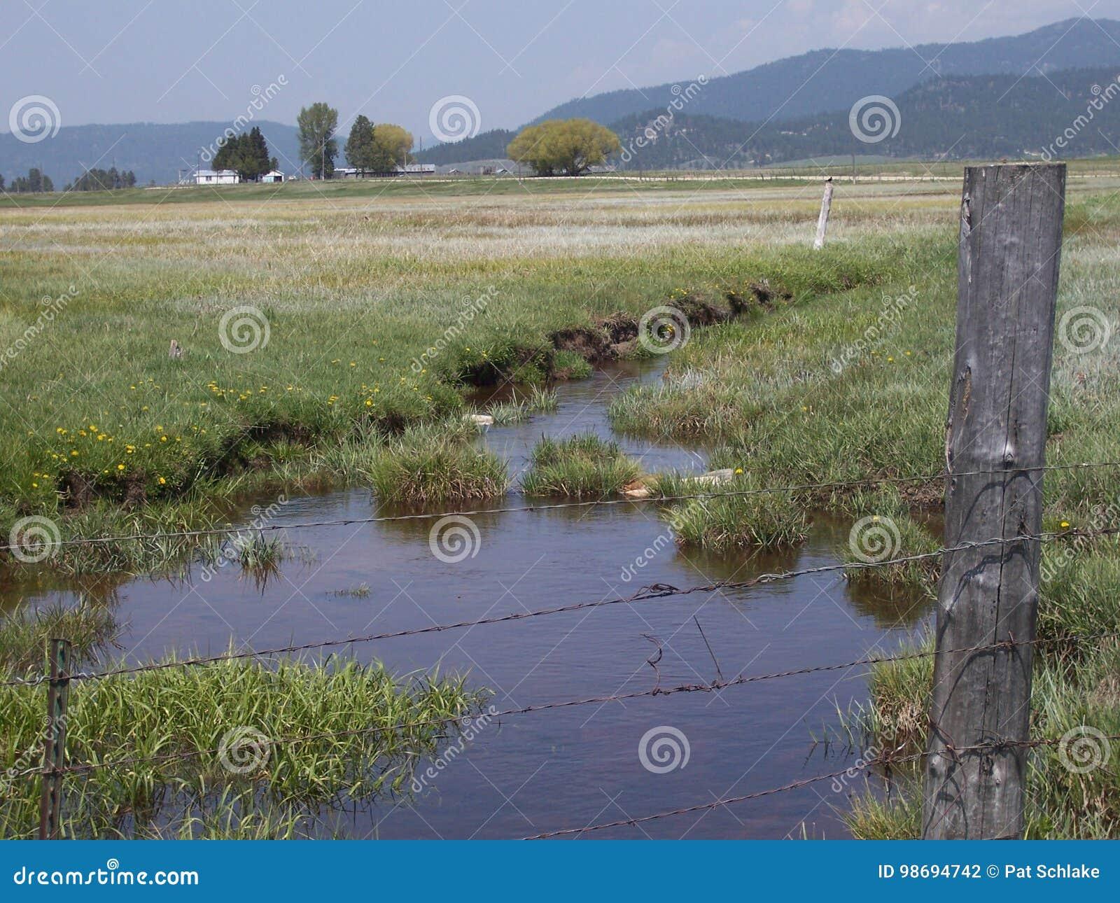 Ruhe eines Nebenflusses, der durch ein Feld im Land läuft