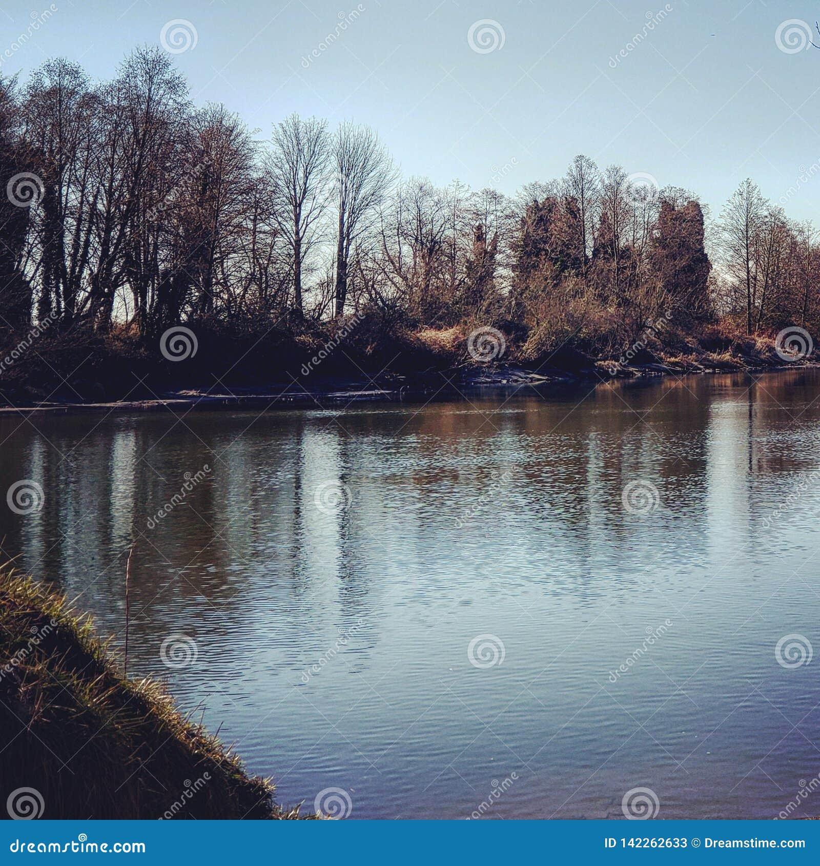 Ruhig Fluss im Fall