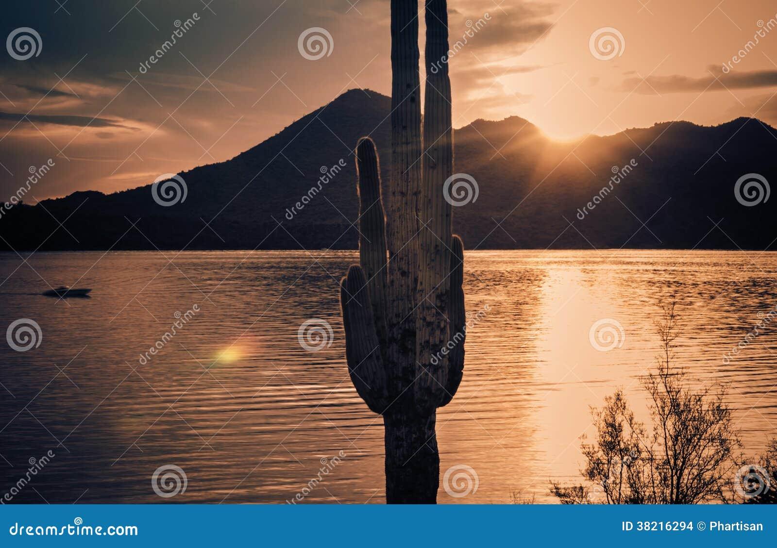 Ruhiger wasser- Roosevelt Lake, Arizona, USA