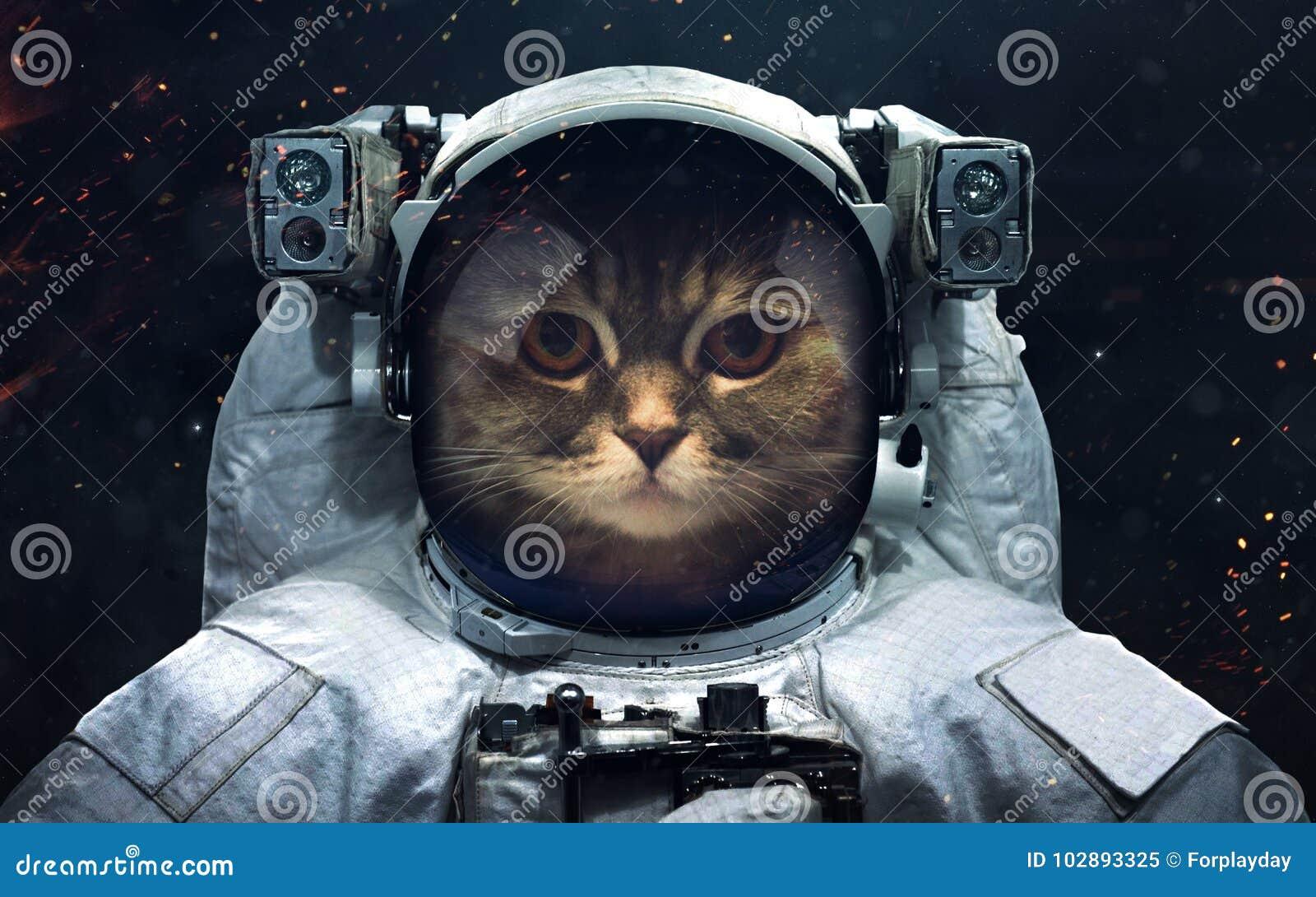Ruimtescience fictionbeeld Dit die beeldelementen door NASA worden geleverd