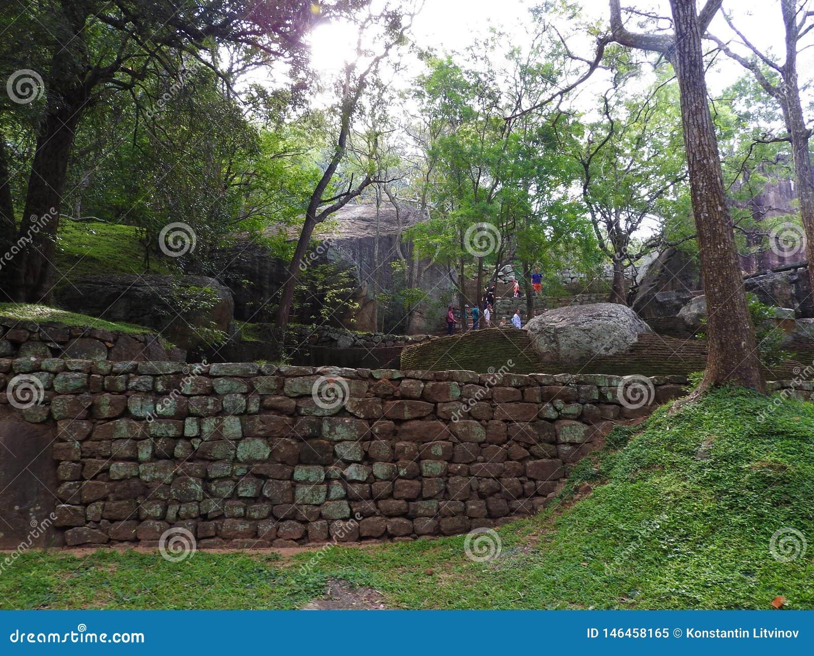 Ruinas de Royal Palace encima de la roca del le?n, Sigiriya, Sri Lanka, sitio del patrimonio mundial de la UNESCO