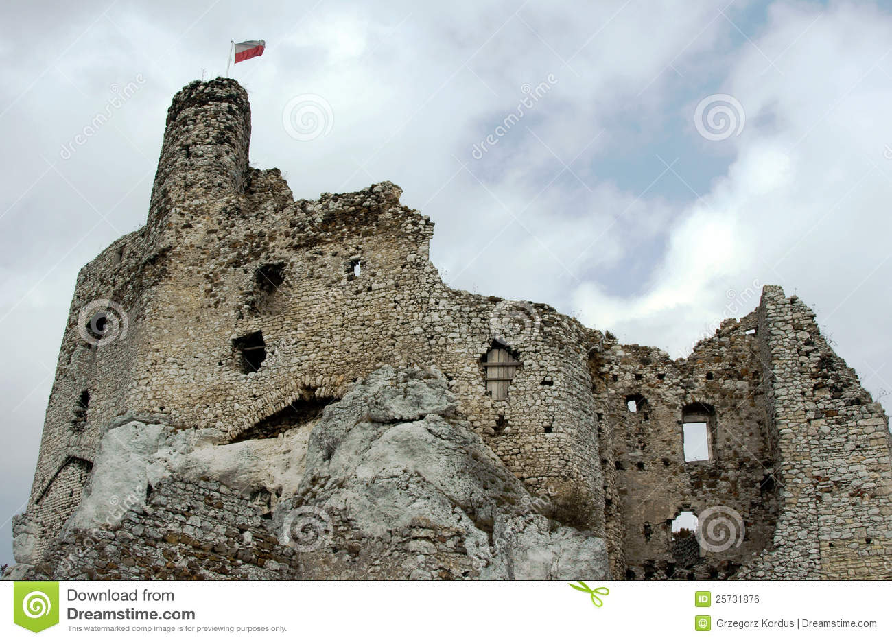 Ruined medieval castle with tower in Mirow