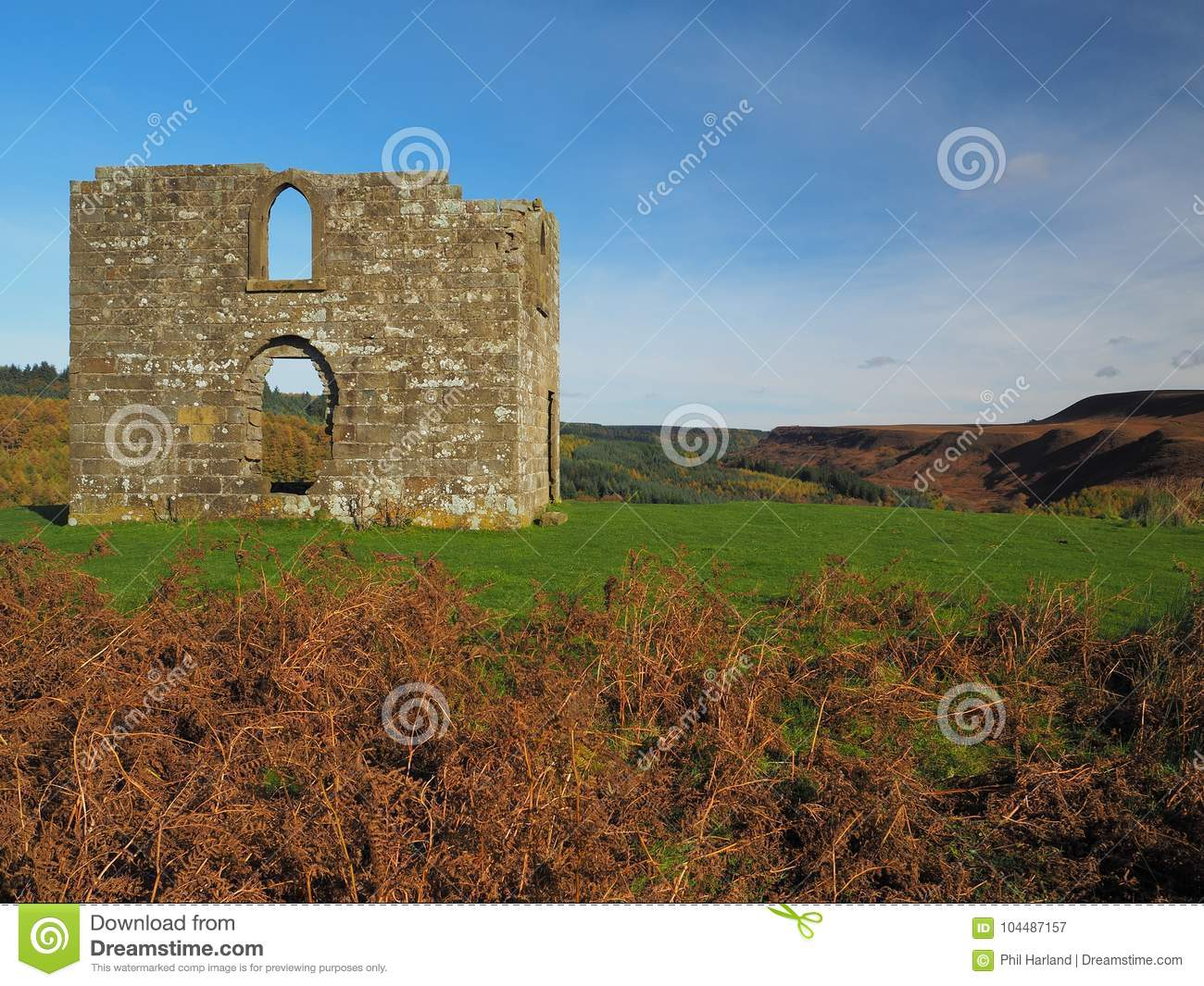 Ruines de Skelton Tower