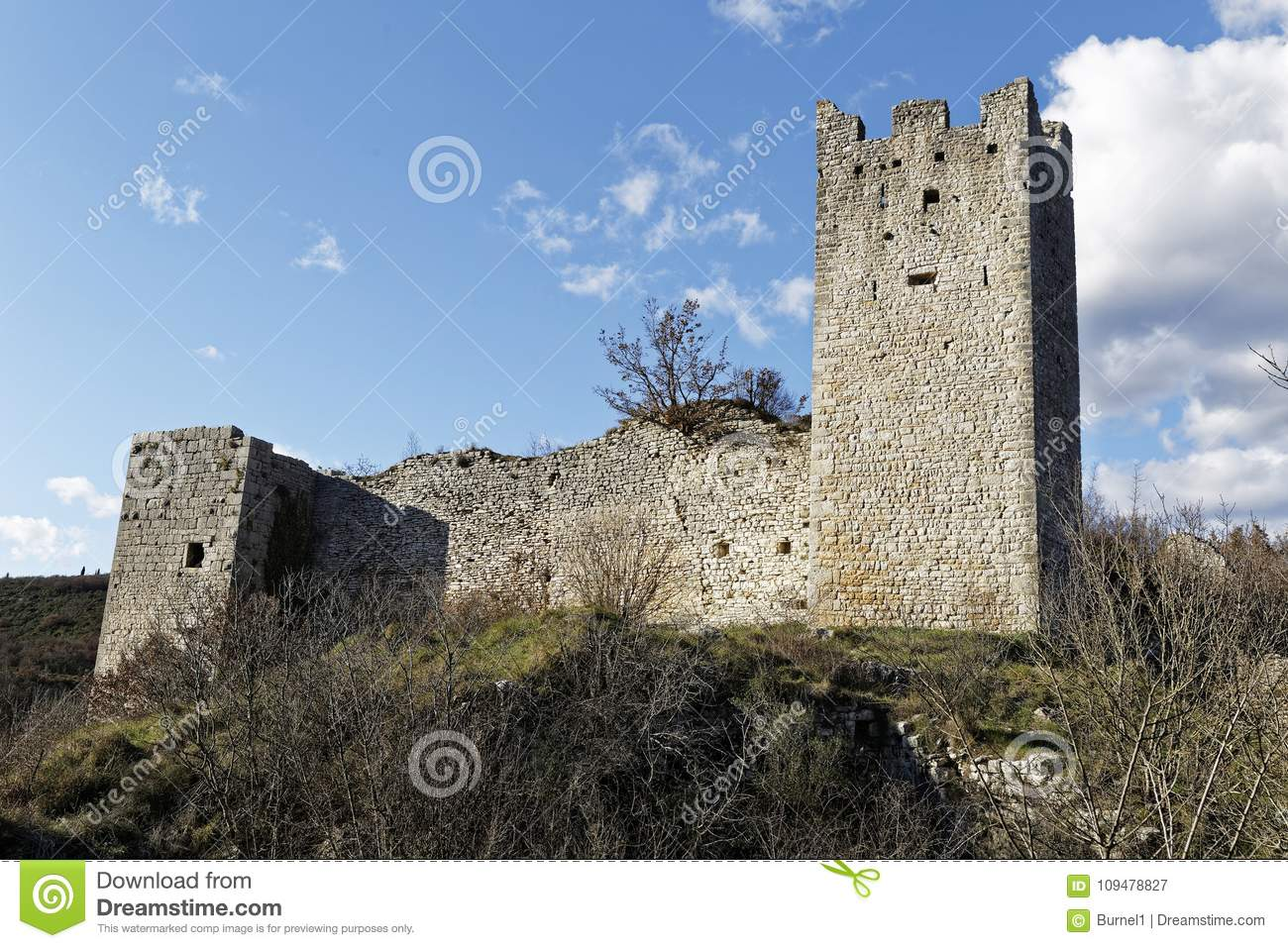 Ruins of old castle