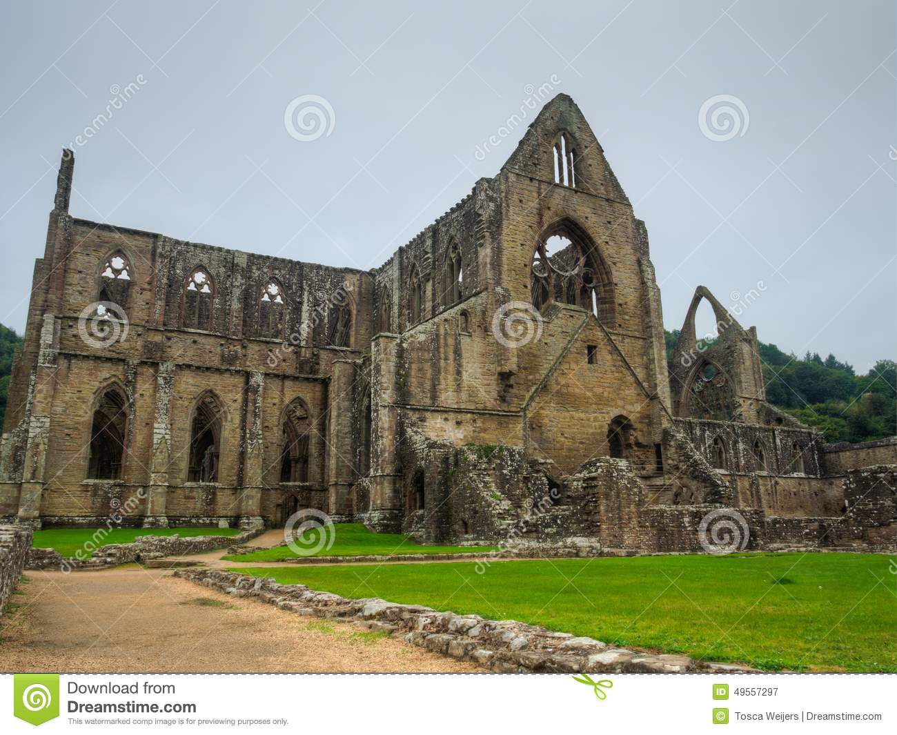 close reading on tintern abbey Poetry close reading 'tintern abbey' wordsworth's poem written during his tour  along the river wye is text captivated with memory and how it affects the person.