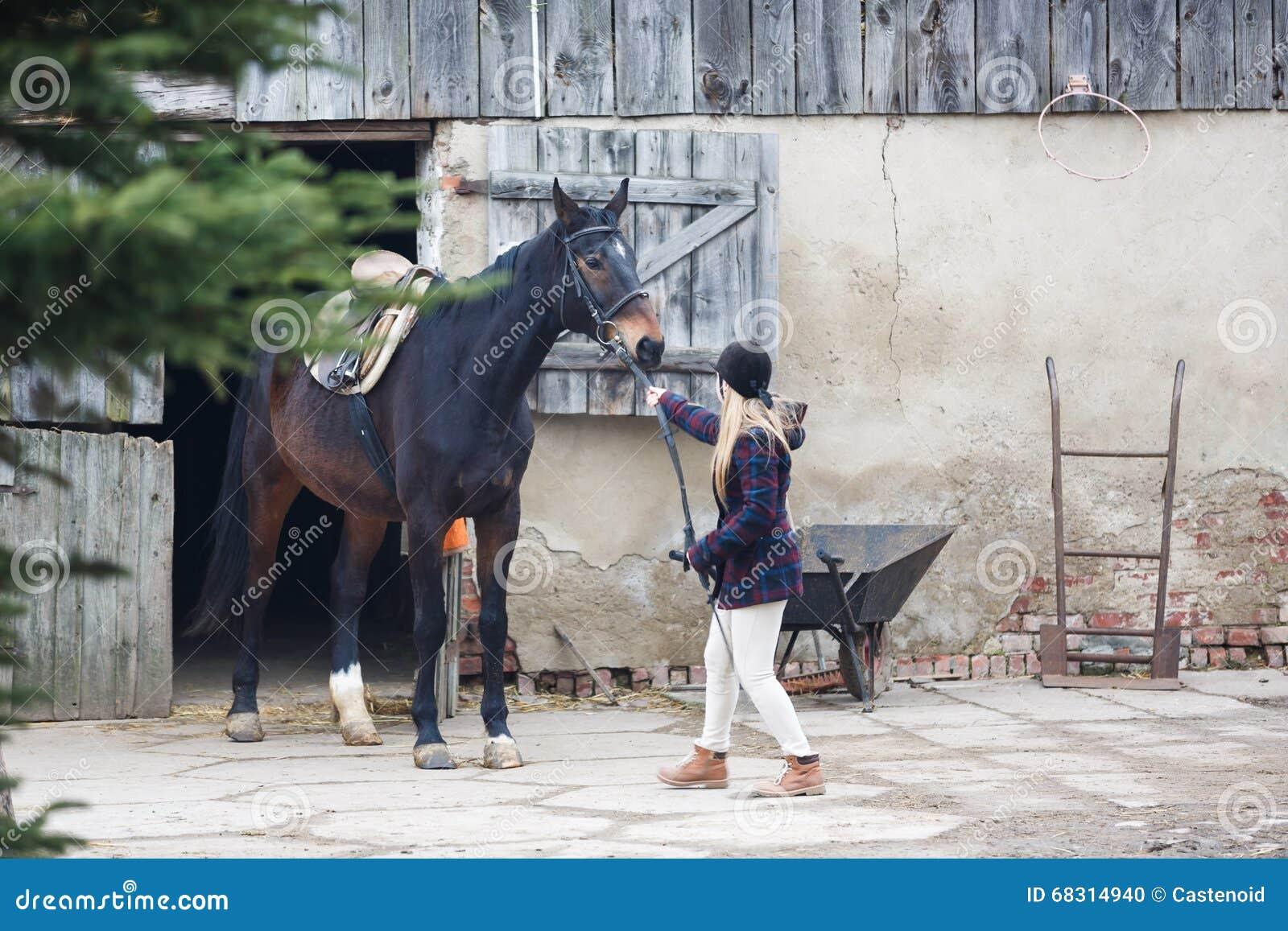 Ruiter met het paard