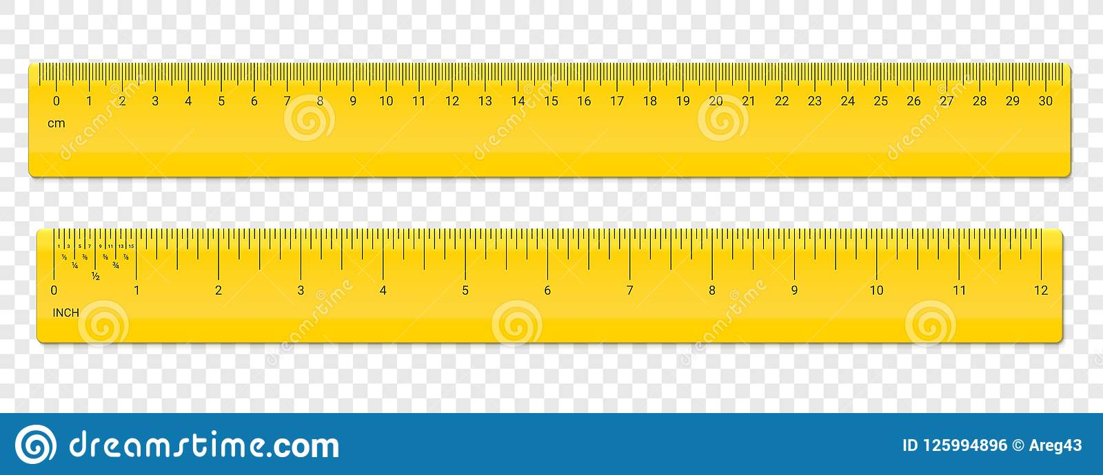 Ruler Centimeter And Inches Scale Vector Plastic Stock Vector