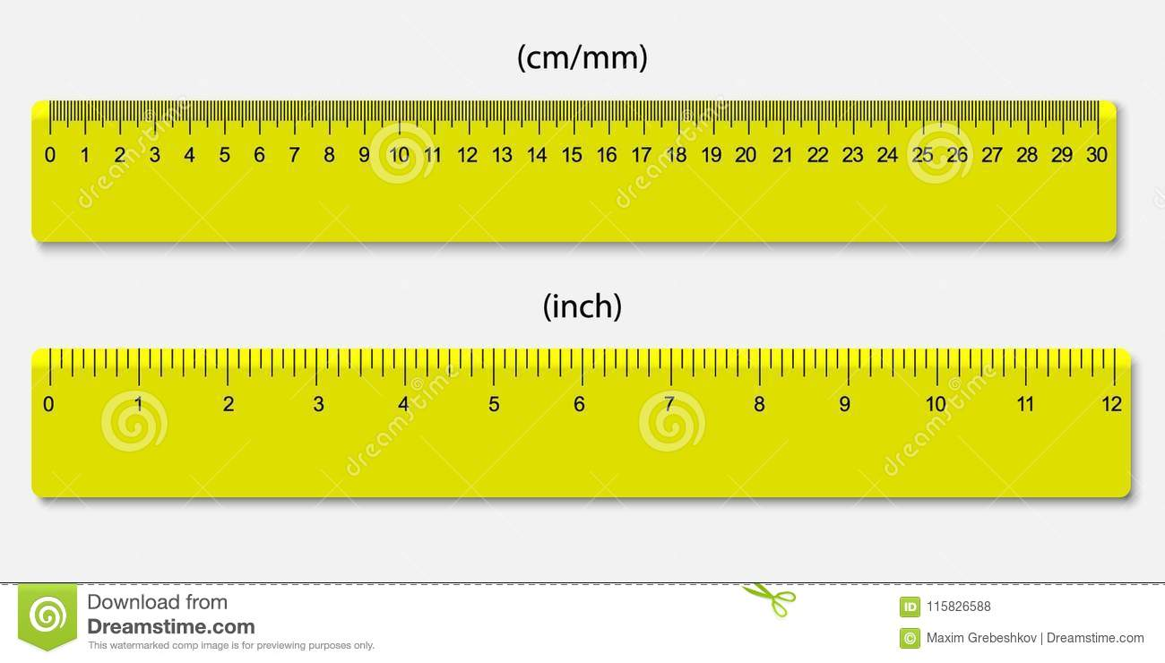 Rulers Marked In Centimeters And Inches