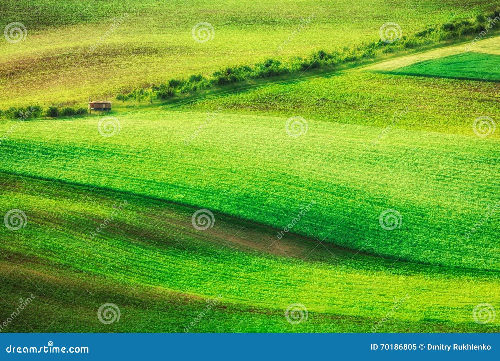 Rullande landskap av södra Moravia