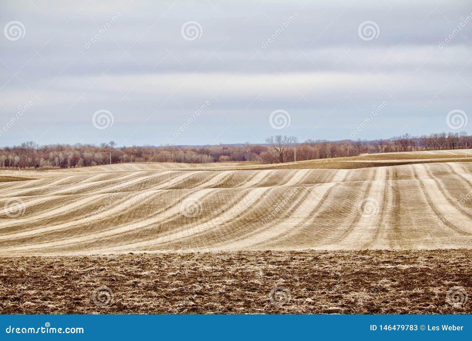 Rullande skördat fält