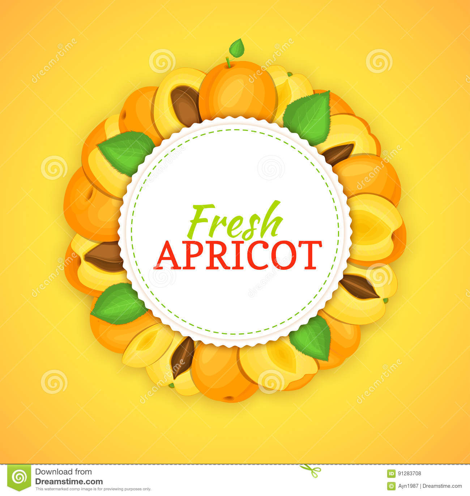 Rund ram som komponeras av mogen aprikosfrukt Vektorkortillustration