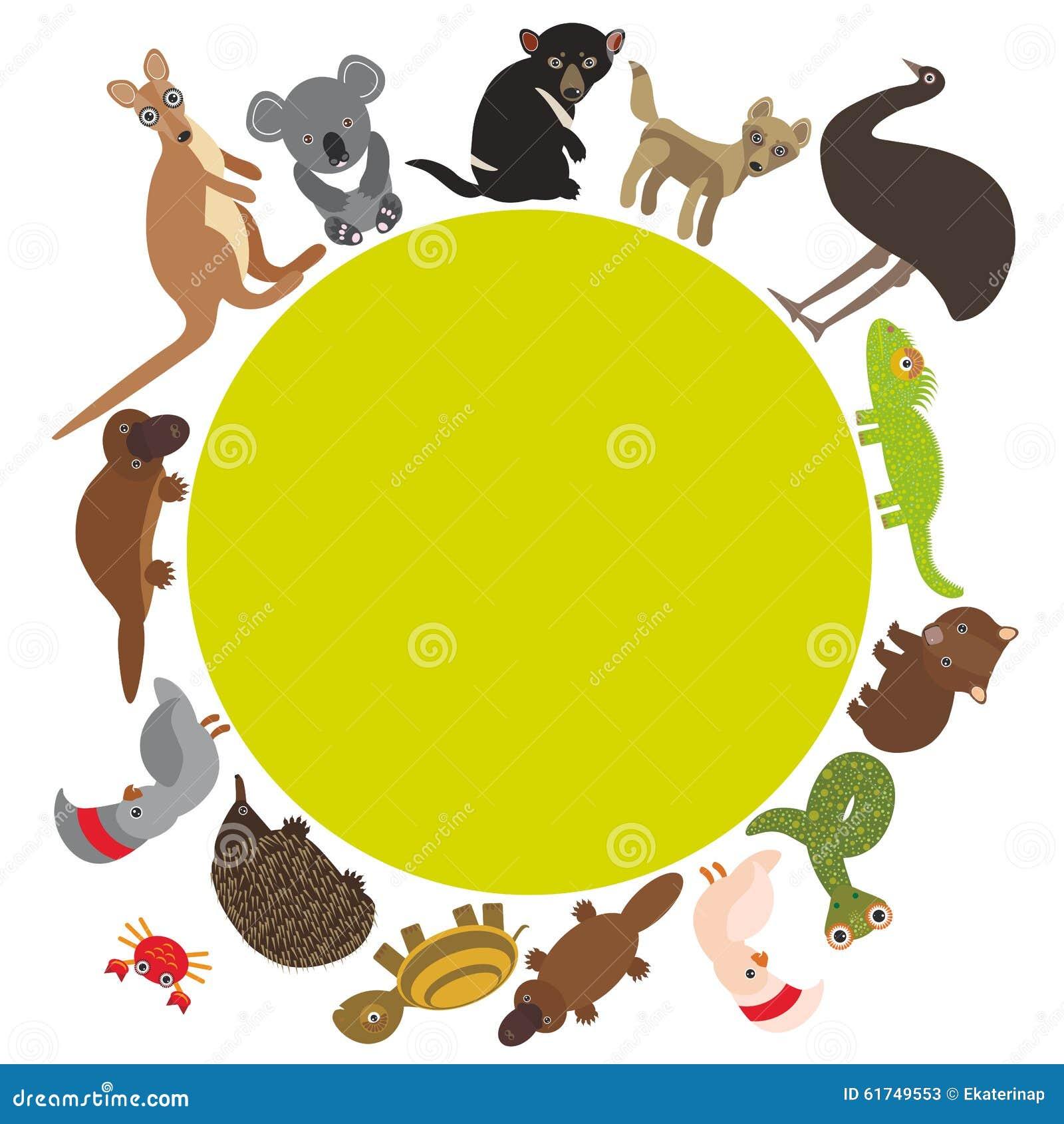 Runder Rahmen Für Text Tiere Australien: Echidna Vektor Abbildung ...