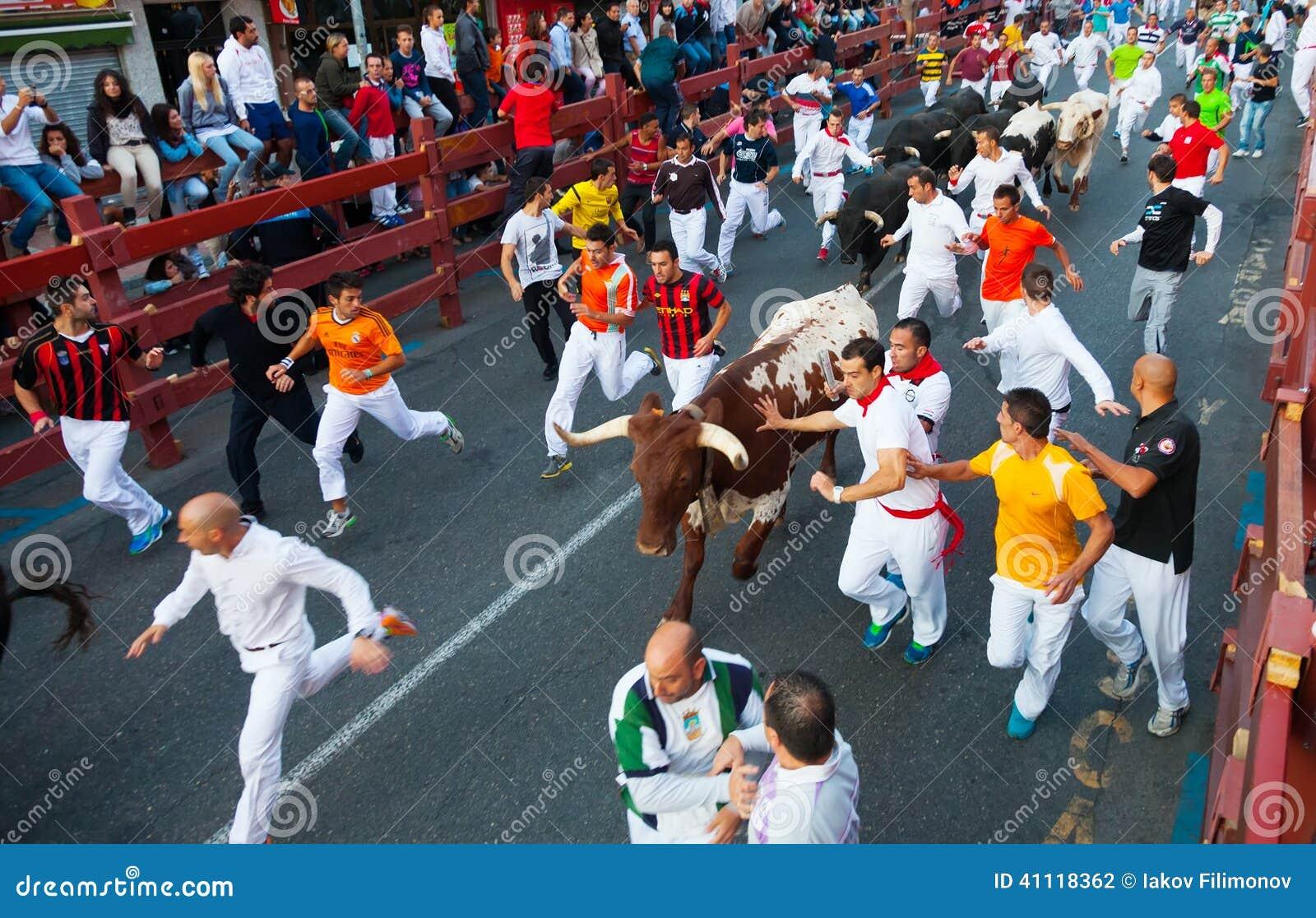 Runnen van de Stieren