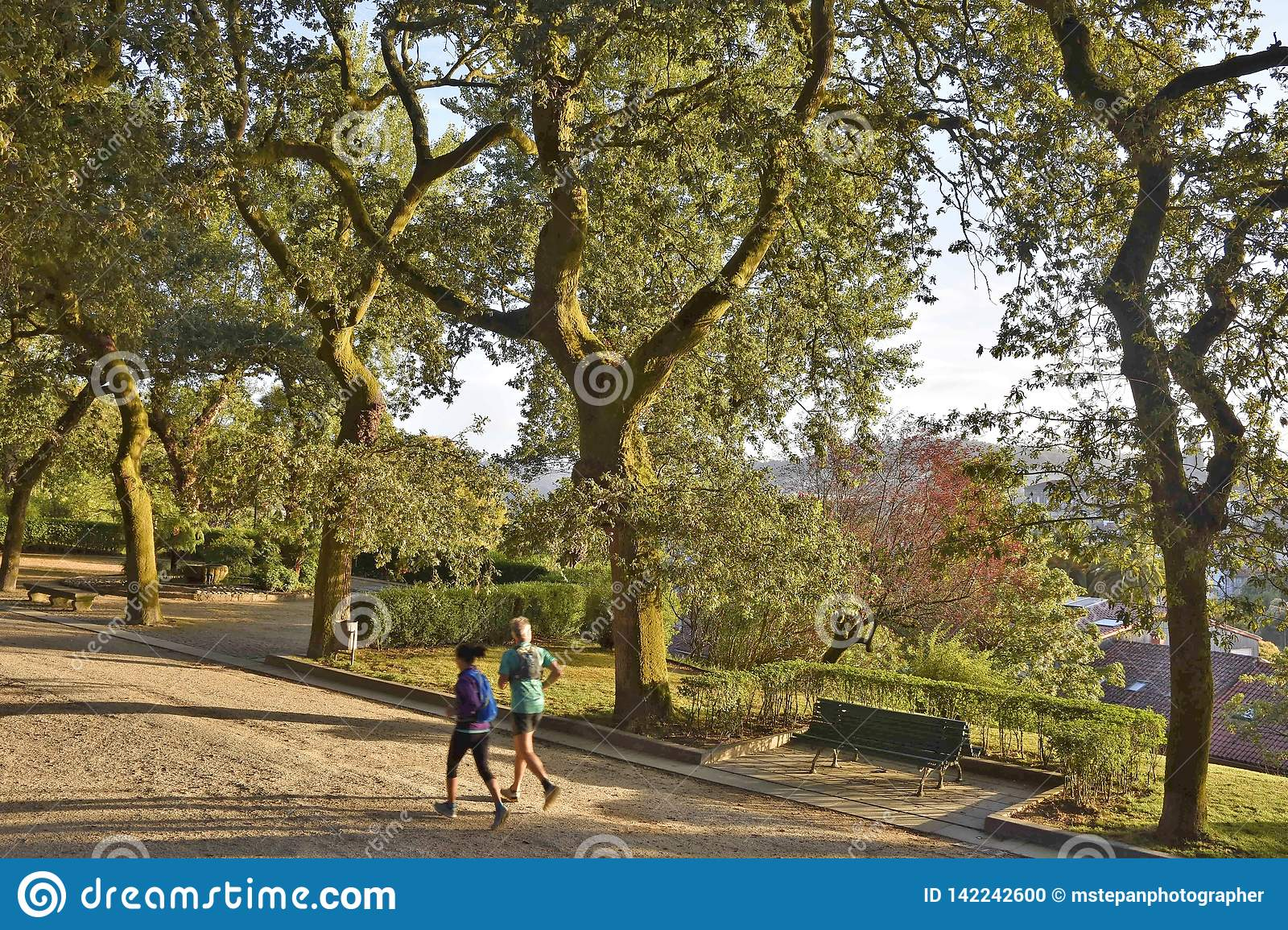 Runners in park Galicia Spain