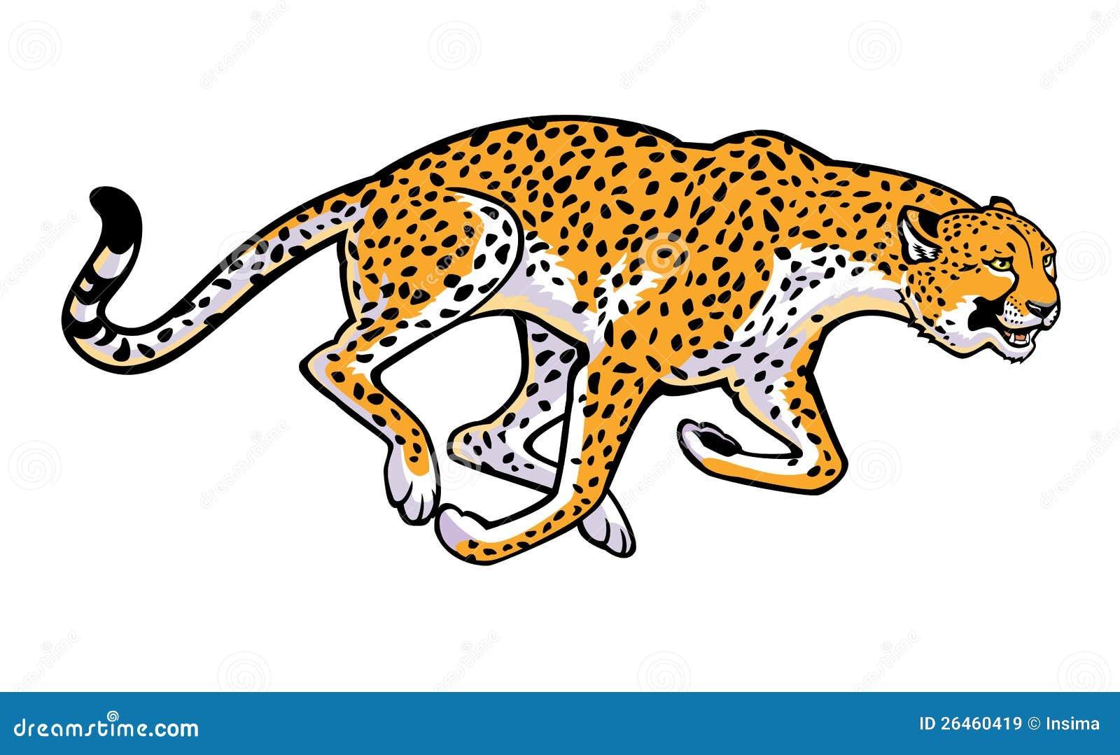 Running cheetah vector - photo#7