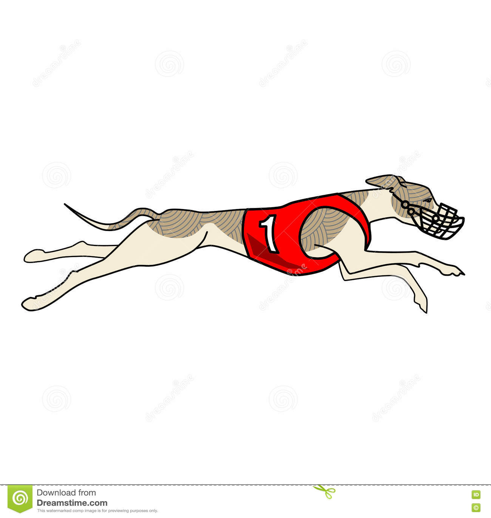 b42452ce7a8b6 Running Dog Whippet Breed