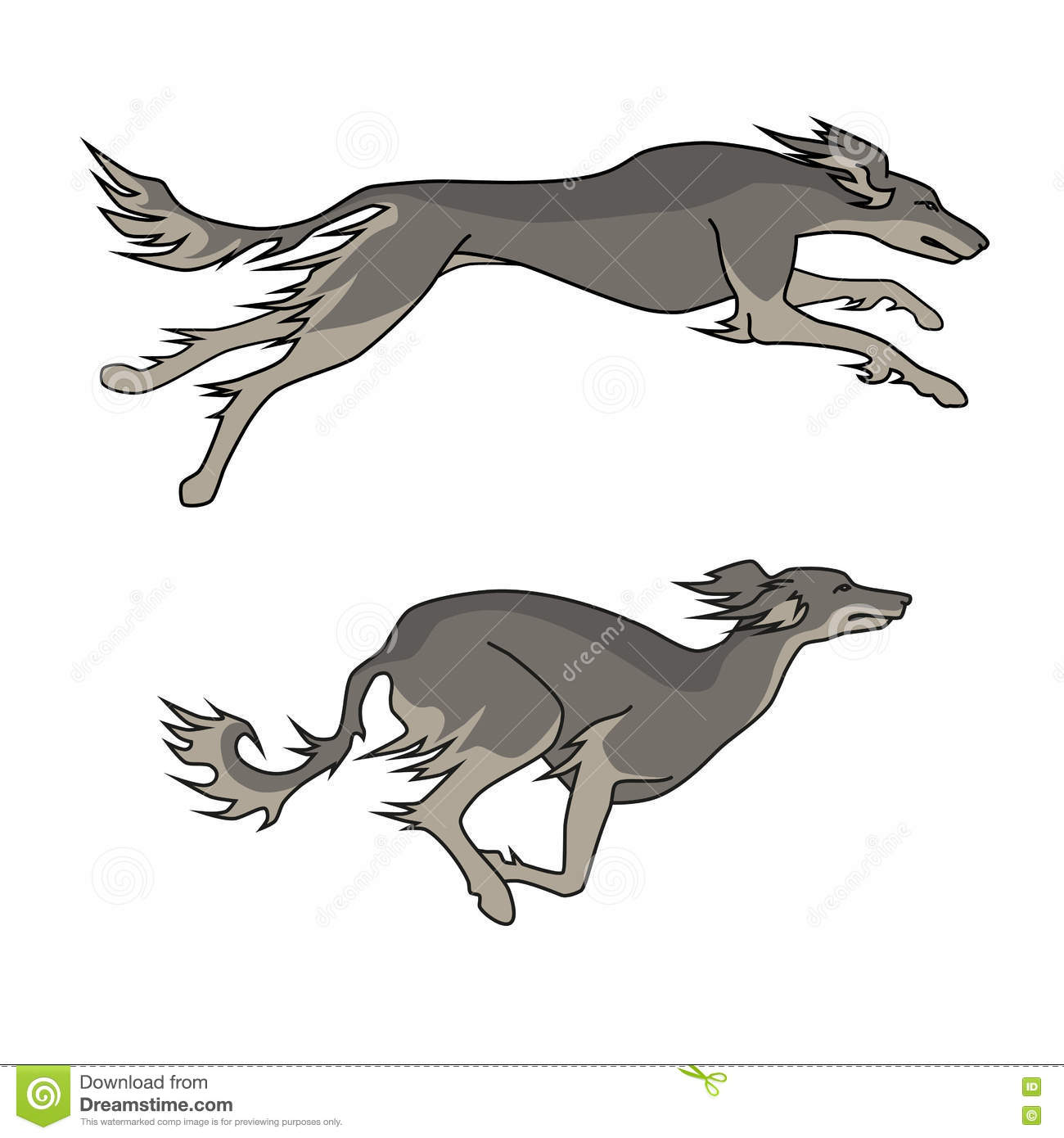 Running Dogs Saluki Breed, Two Poses Stock Vector - Illustration of